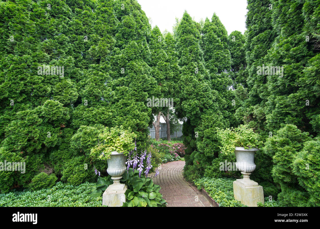 Ladew Toptary Gardens Maryland beautiful sculptured plants Pink Garden gardens and flowers for tourist - Stock Image
