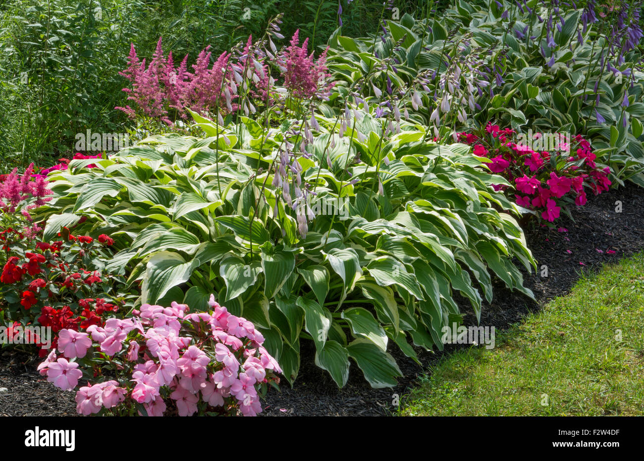 Bar Harbor Maine Colorful Flower Gardens In Yard Of Home In Summer