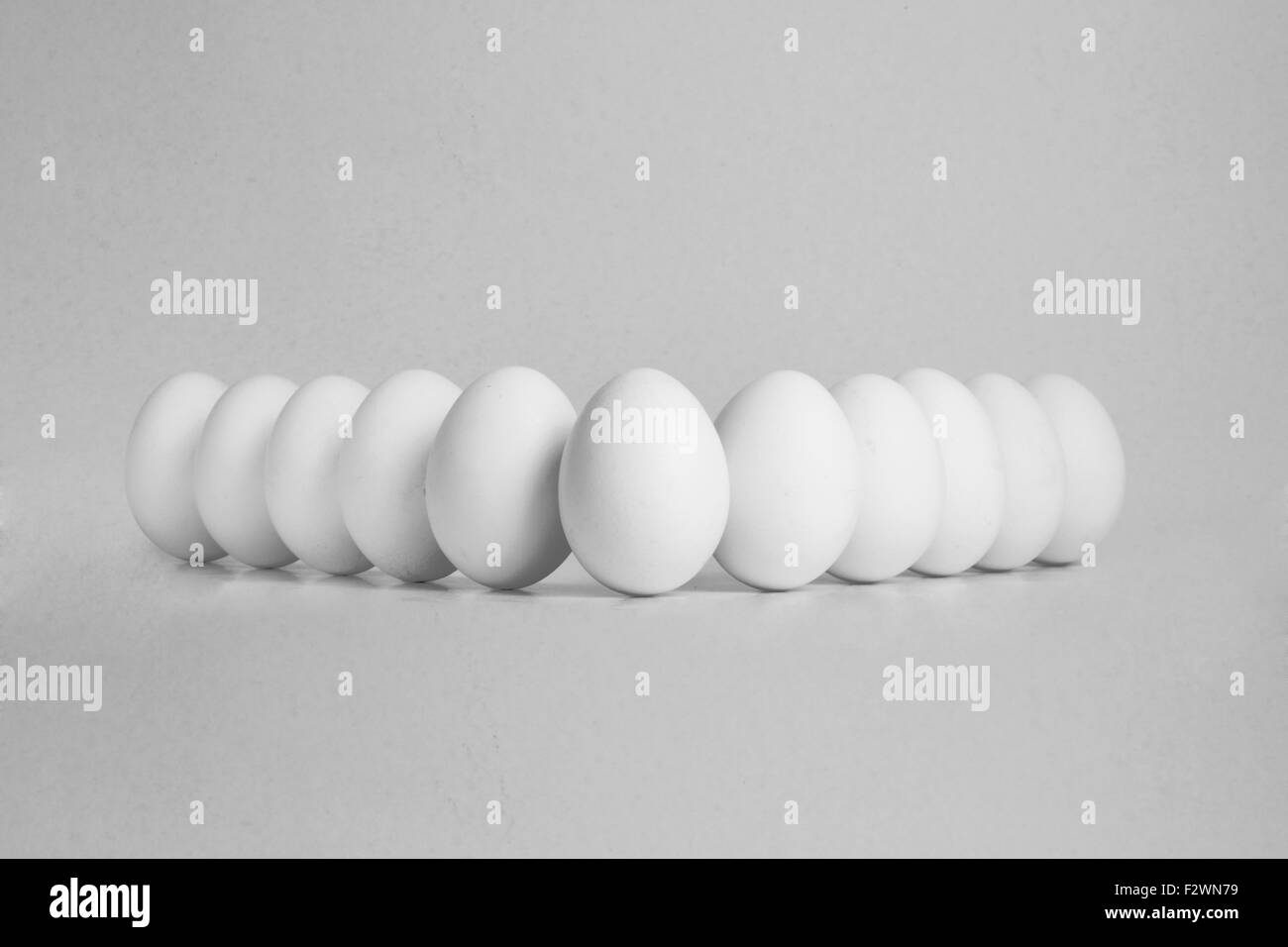 eleven eggs in a row on isolated white background - Stock Image