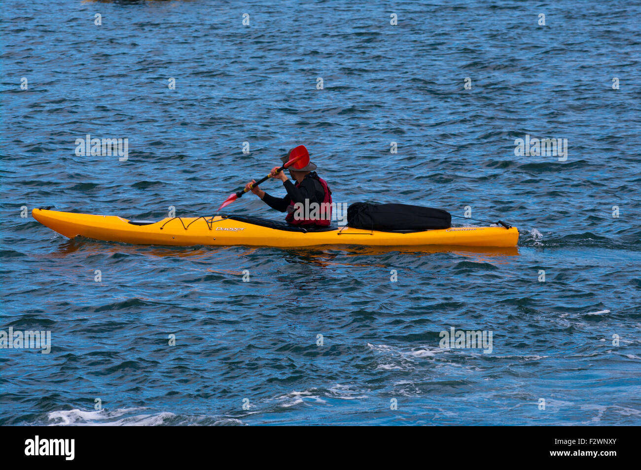 Side View Of A Person Paddling a Yellow Dagger Kayak - Stock Image