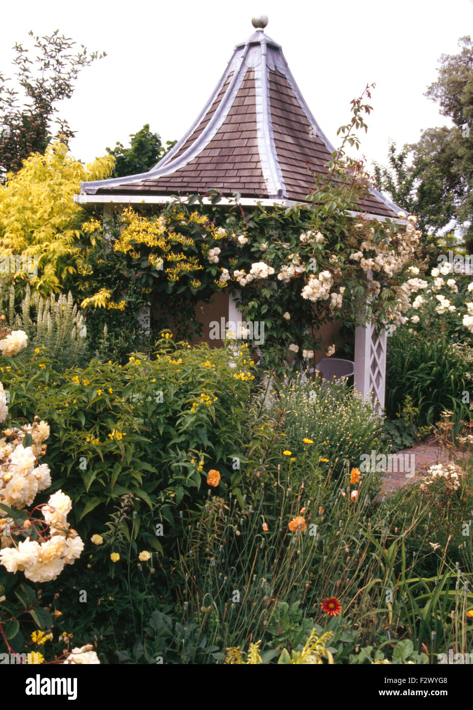 White roses on hexagonal gazebo with tiled roof in large country garden in summer - Stock Image