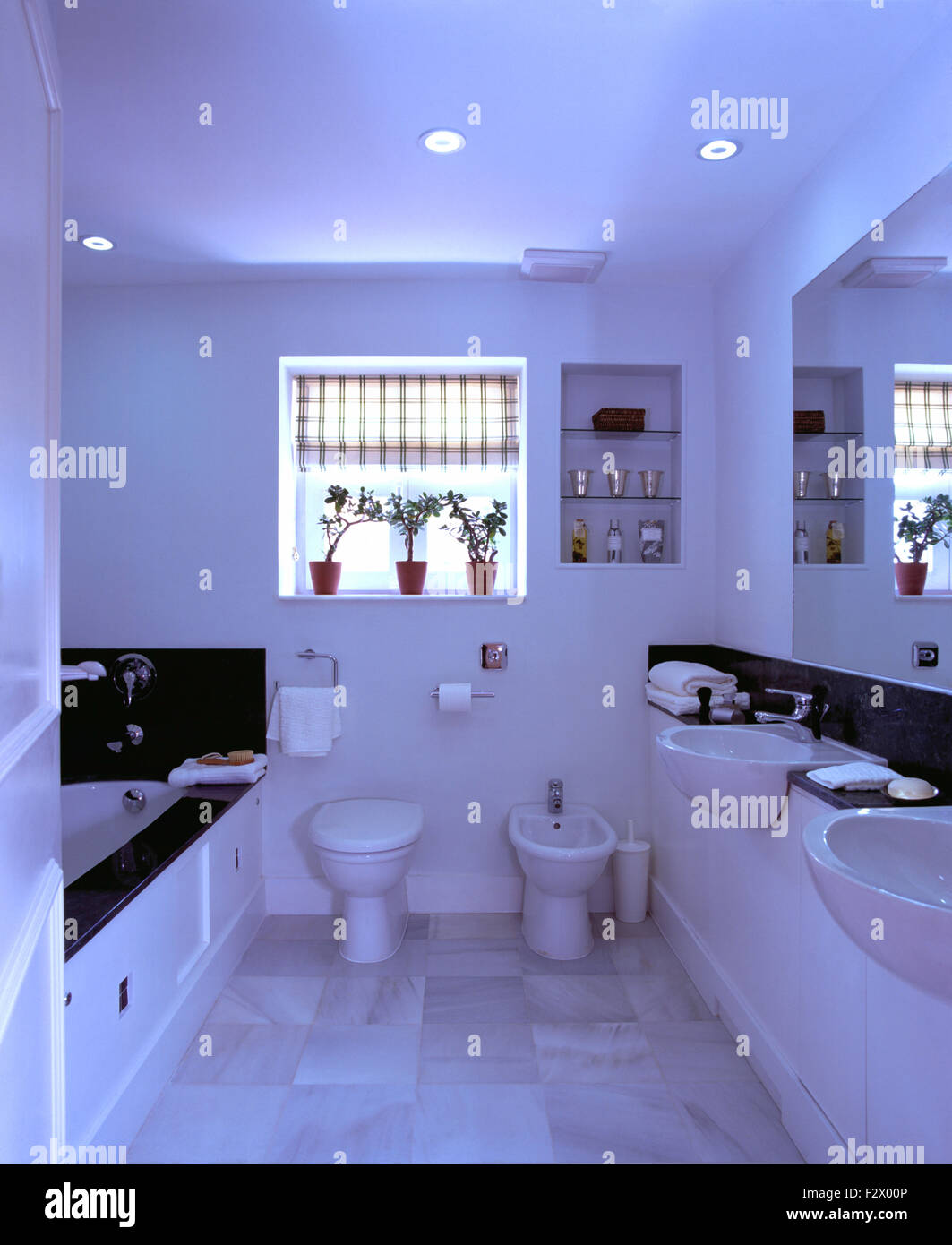 . Checked blind on window above toilet and bidet in modern white Stock