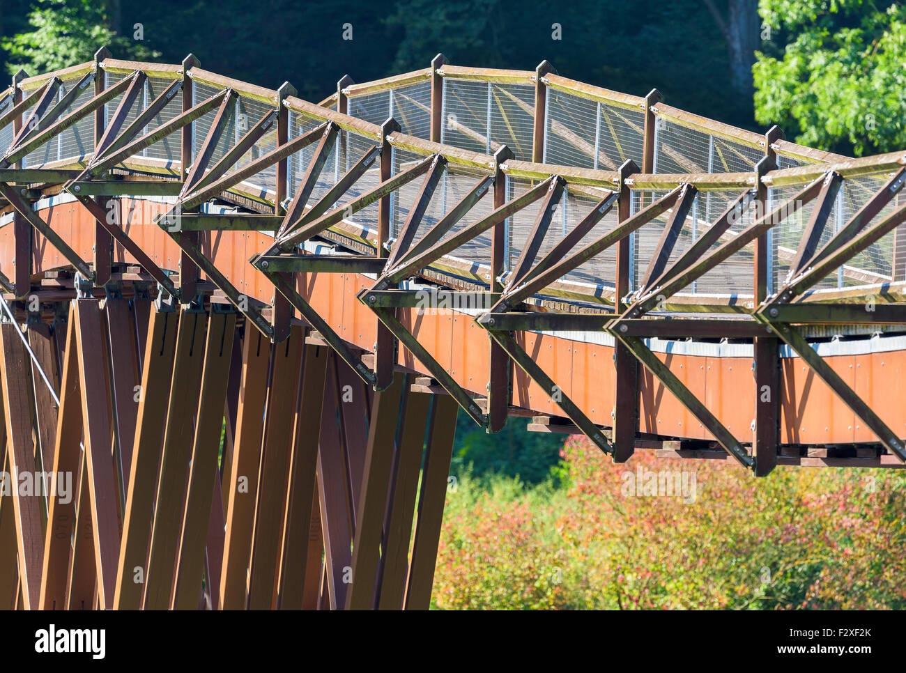 waved wooden bridge in Essing, Altmühltal, Bavaria, 'Oberpfalz' Germany. called Tatzelwurm, Longest - Stock Image