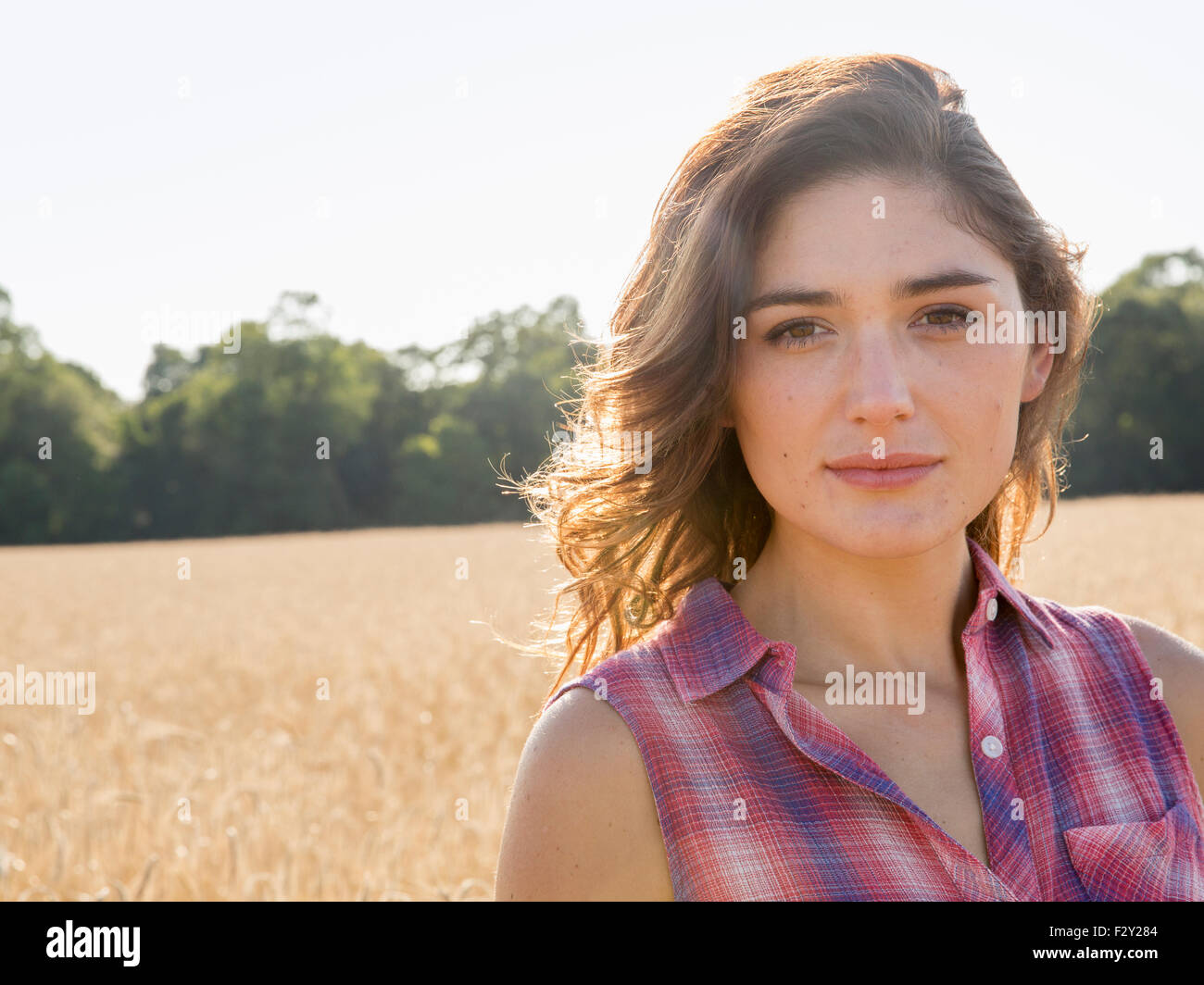 A young woman standing in a field of tall ripe corn. - Stock Image