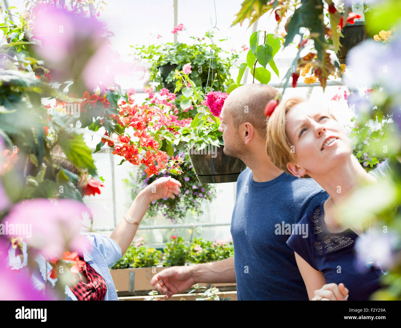 Couple looking at colourful flowers and hanging baskets in a garden centre. - Stock Image
