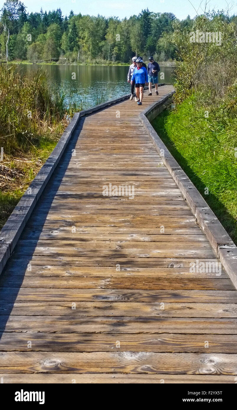 Bicyclists walk down wooden dock after viewing Lake Cassidy along the Centennial Bike Trail in Snohomish County, - Stock Image