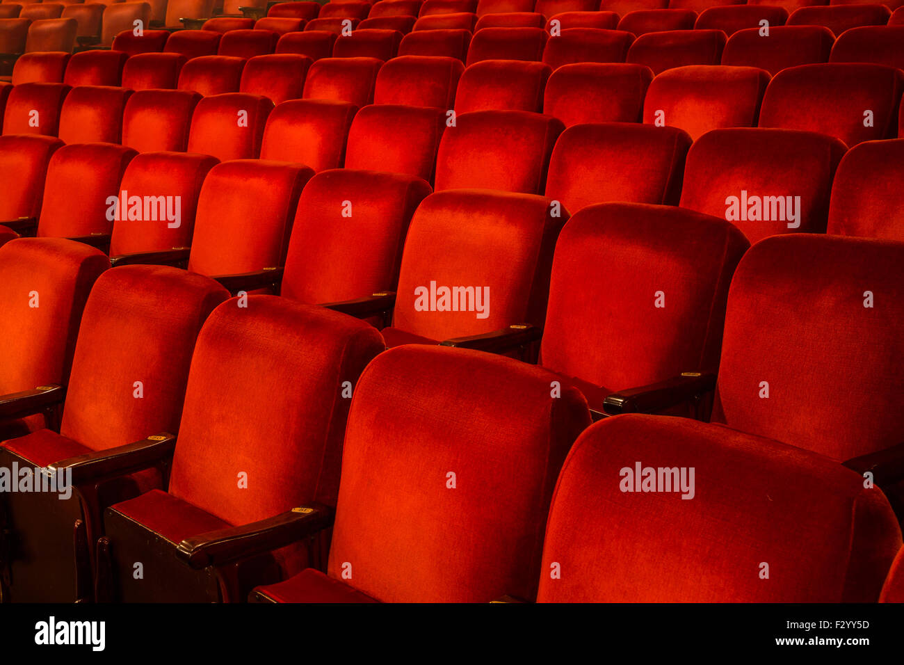 Rows of Red Chairs inside a theatre with copy space Stock Photo