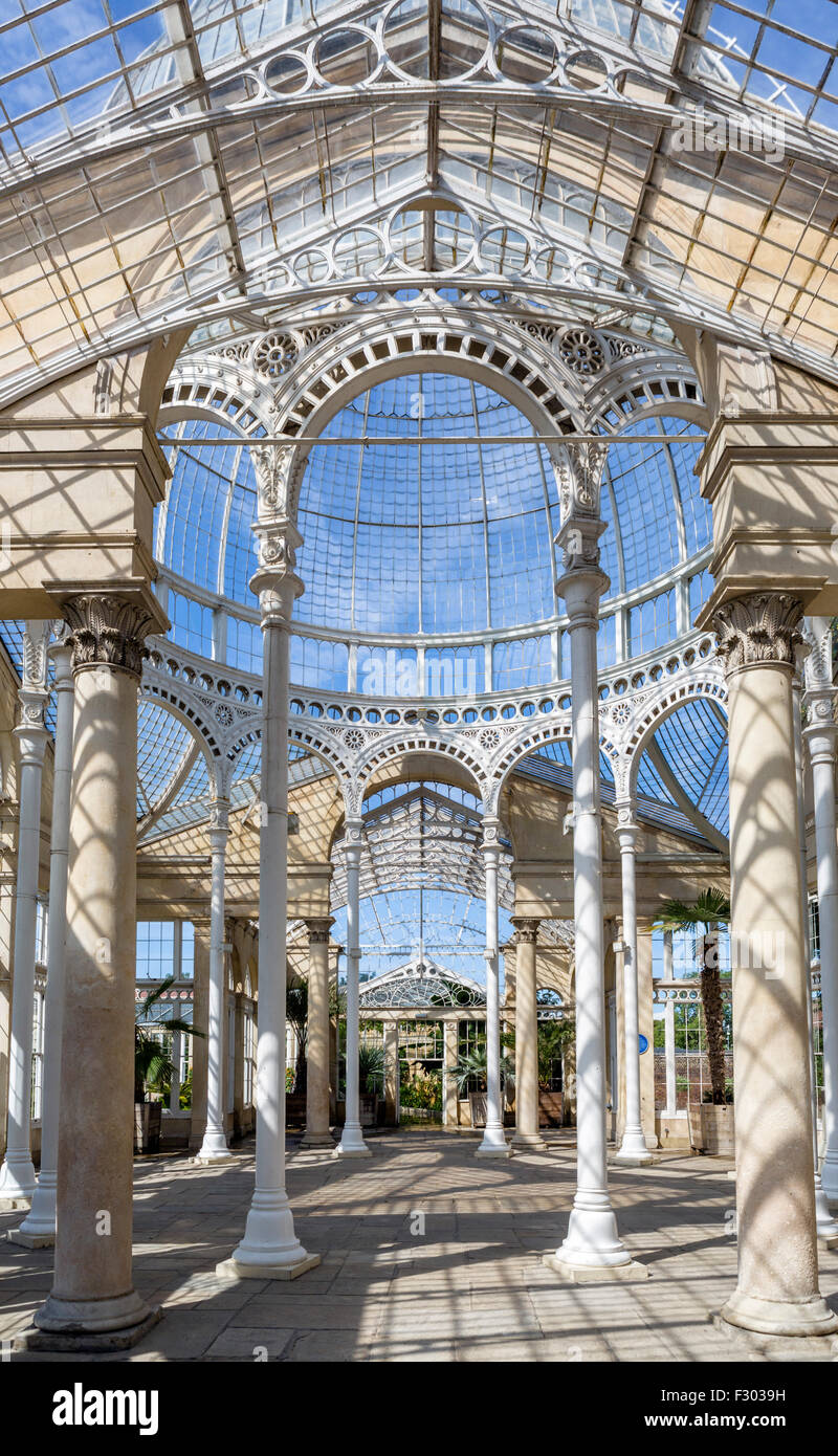 Interior of The Great Conservatory in the gardens of Syon House, Syon Park, West London, England, UK - Stock Image