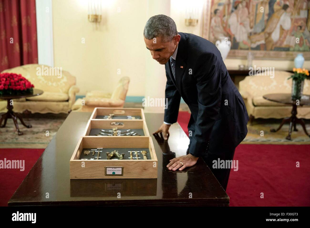 U.S. President Barack Obama views bone fragments belonging to 'Lucy,' the 3.2 million-year-old fossilized - Stock Image