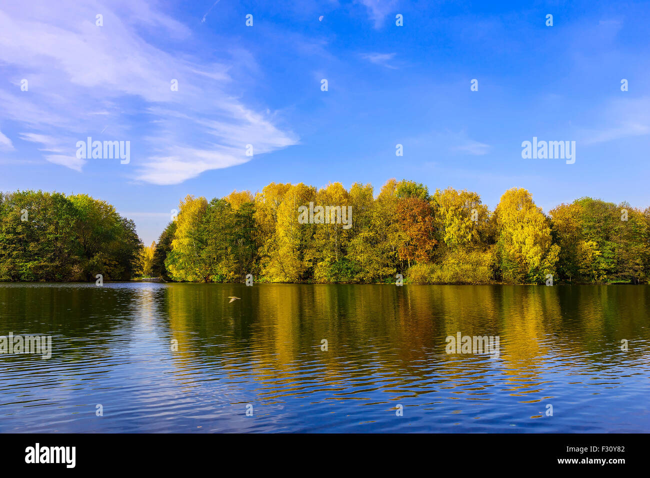 Scenery with Colourful Trees, Cloudy Blue Sky Reflected in the Lake in Autumn Stock Photo