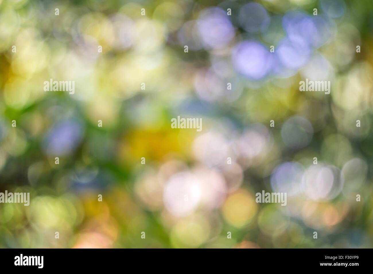Warm multicolor swirly bokeh produced by Helios 44-2 58/2 0