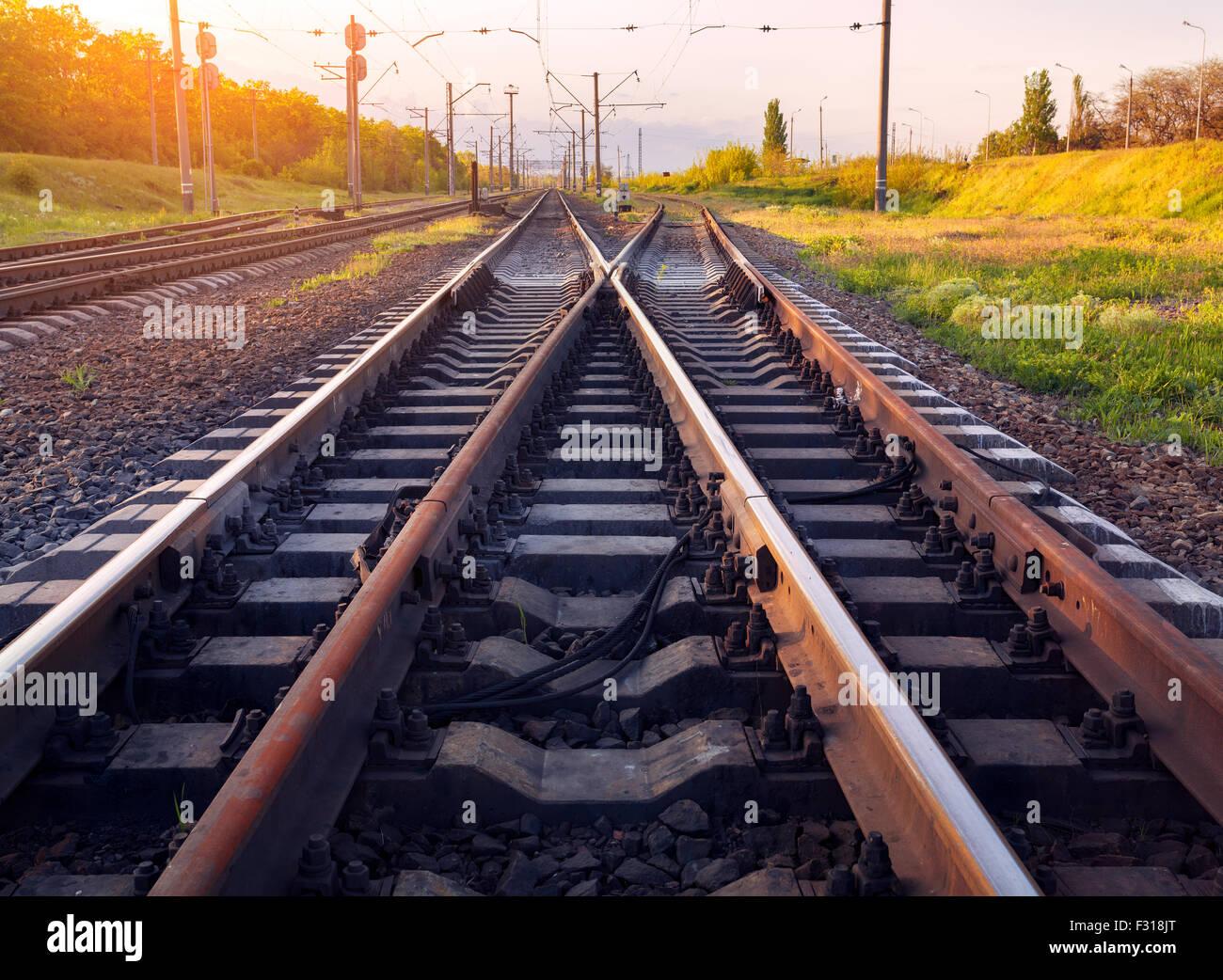 Cargo train platform at sunset. Railroad in Ukraine. Railway station. - Stock Image