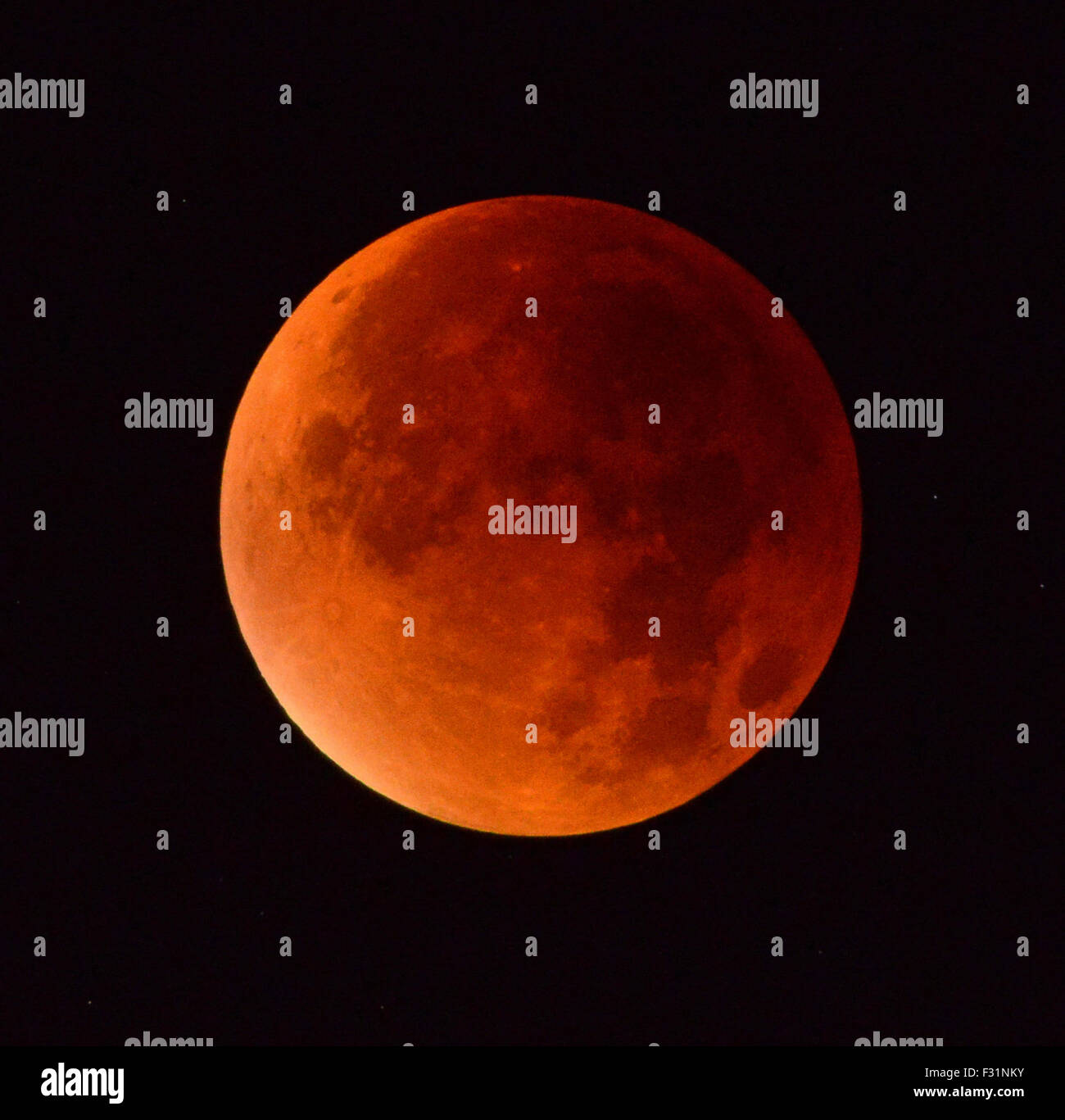 Supermoon, Moon during Lunar eclipse - Stock Image