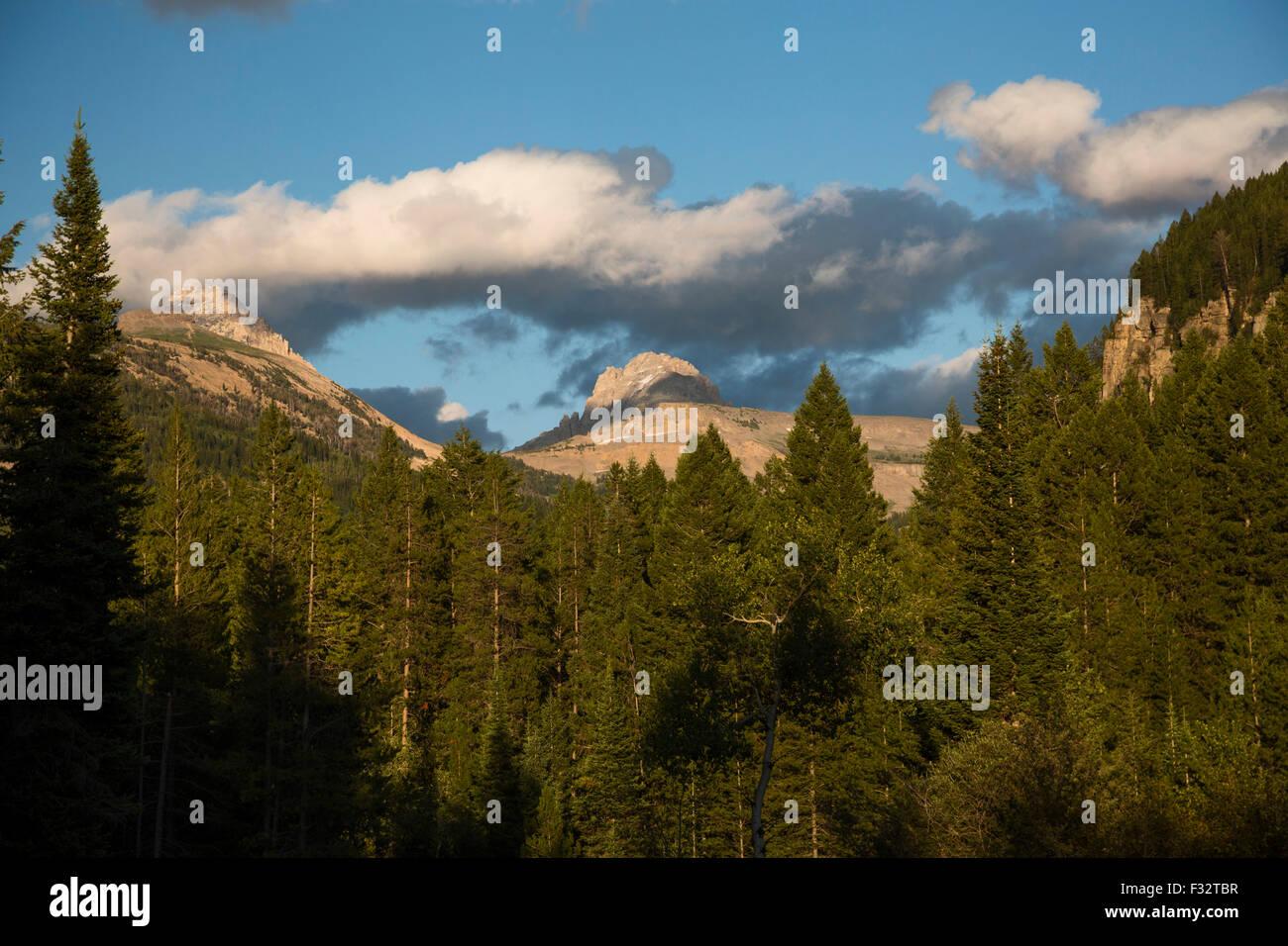 Driggs, Idaho - The Jedediah Smith Wilderness and the Teton mountain range. - Stock Image