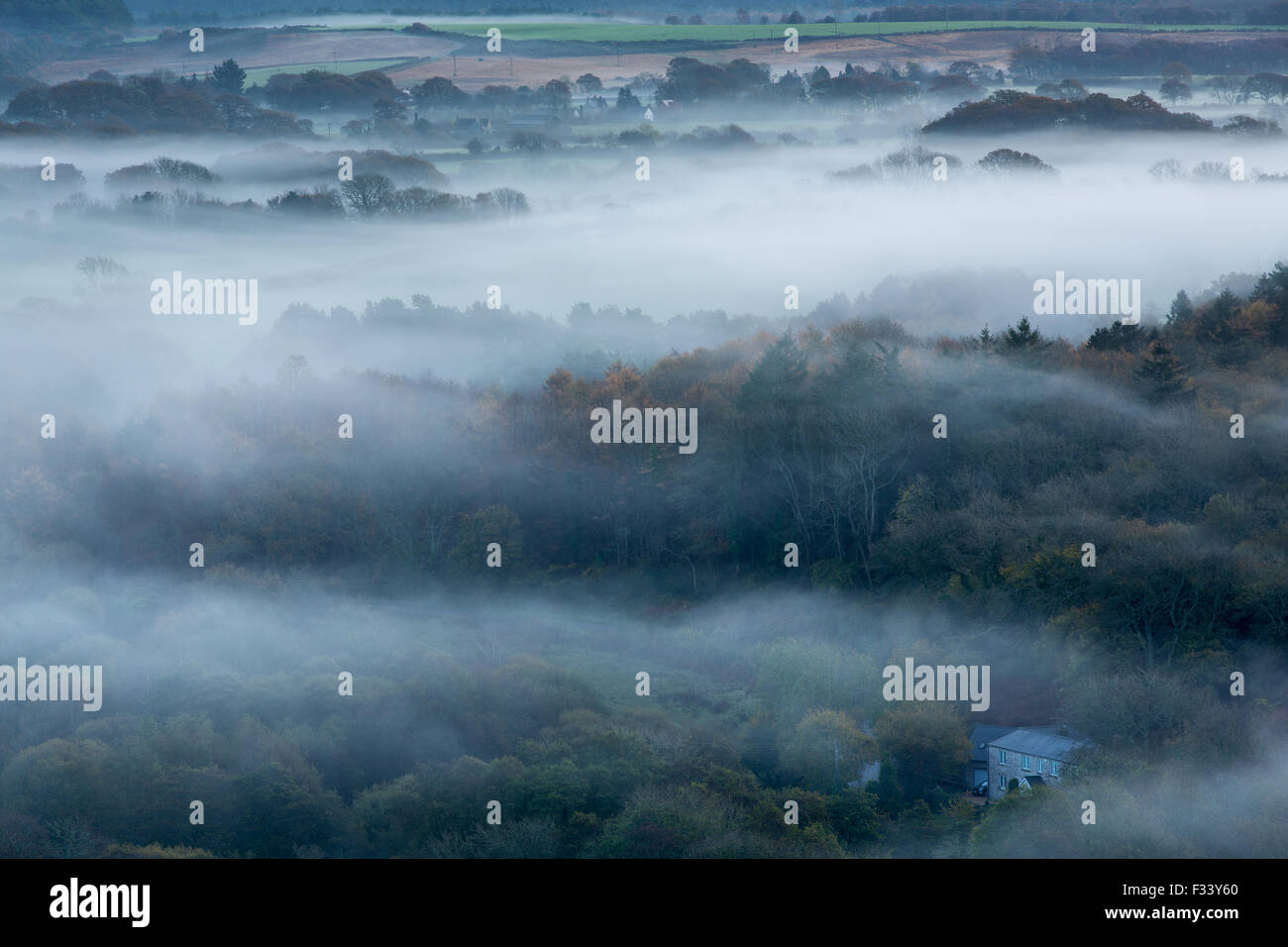 the Isle of Purbeck near Corfe Castle in the mist at dawn, Dorset, England, UK - Stock Image