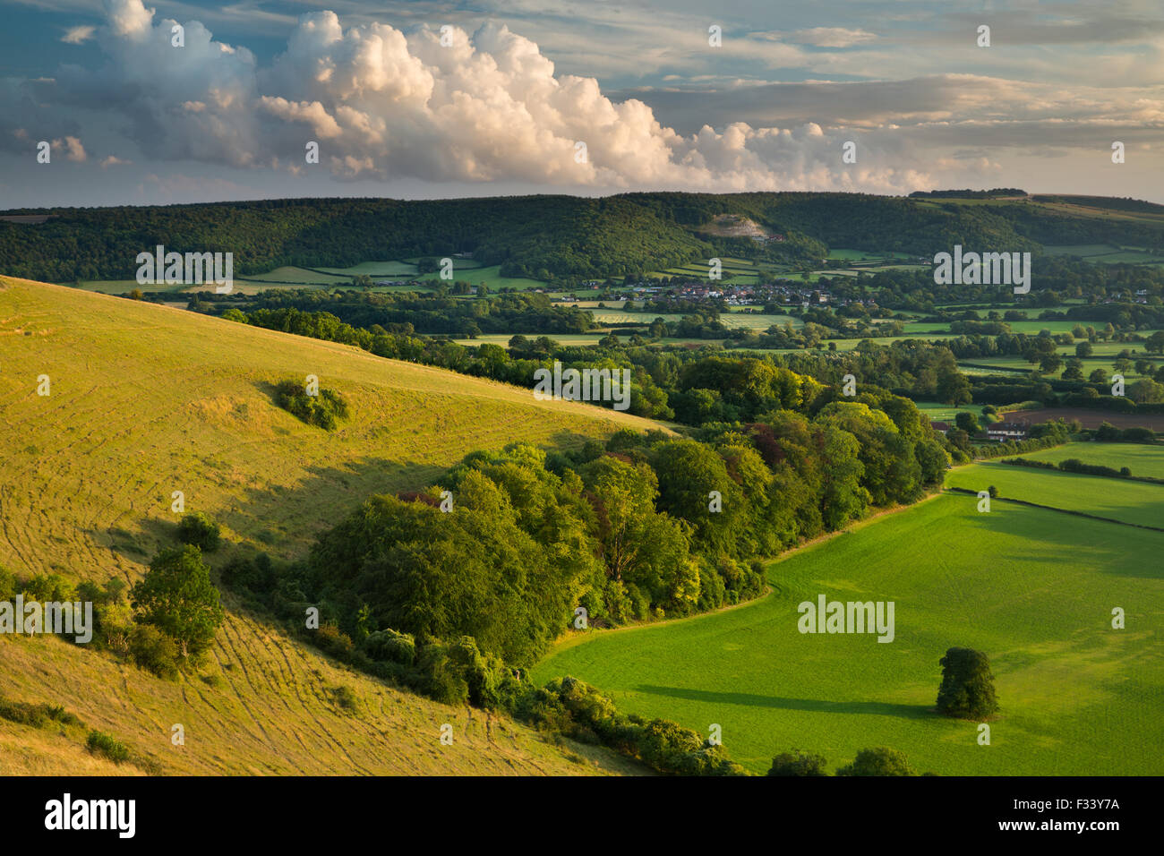 Hambledon Hill, a prehistoric hill fort near Blandford Forum - Stock Image