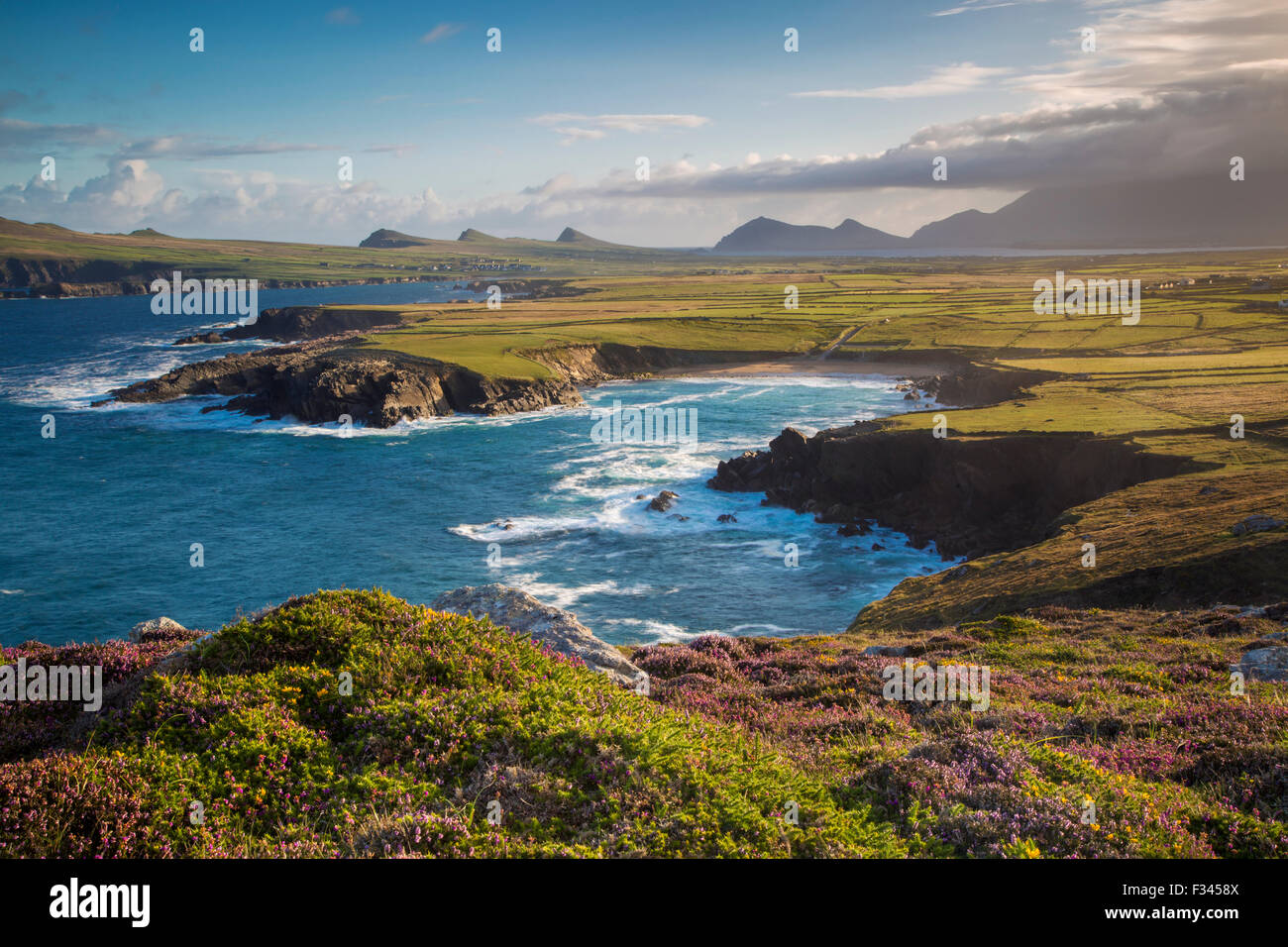 Dawn view over Ballyferriter Bay, Sybil Point and the peaks of the Three Sisters, Dingle Peninsula, County Kerry, Stock Photo