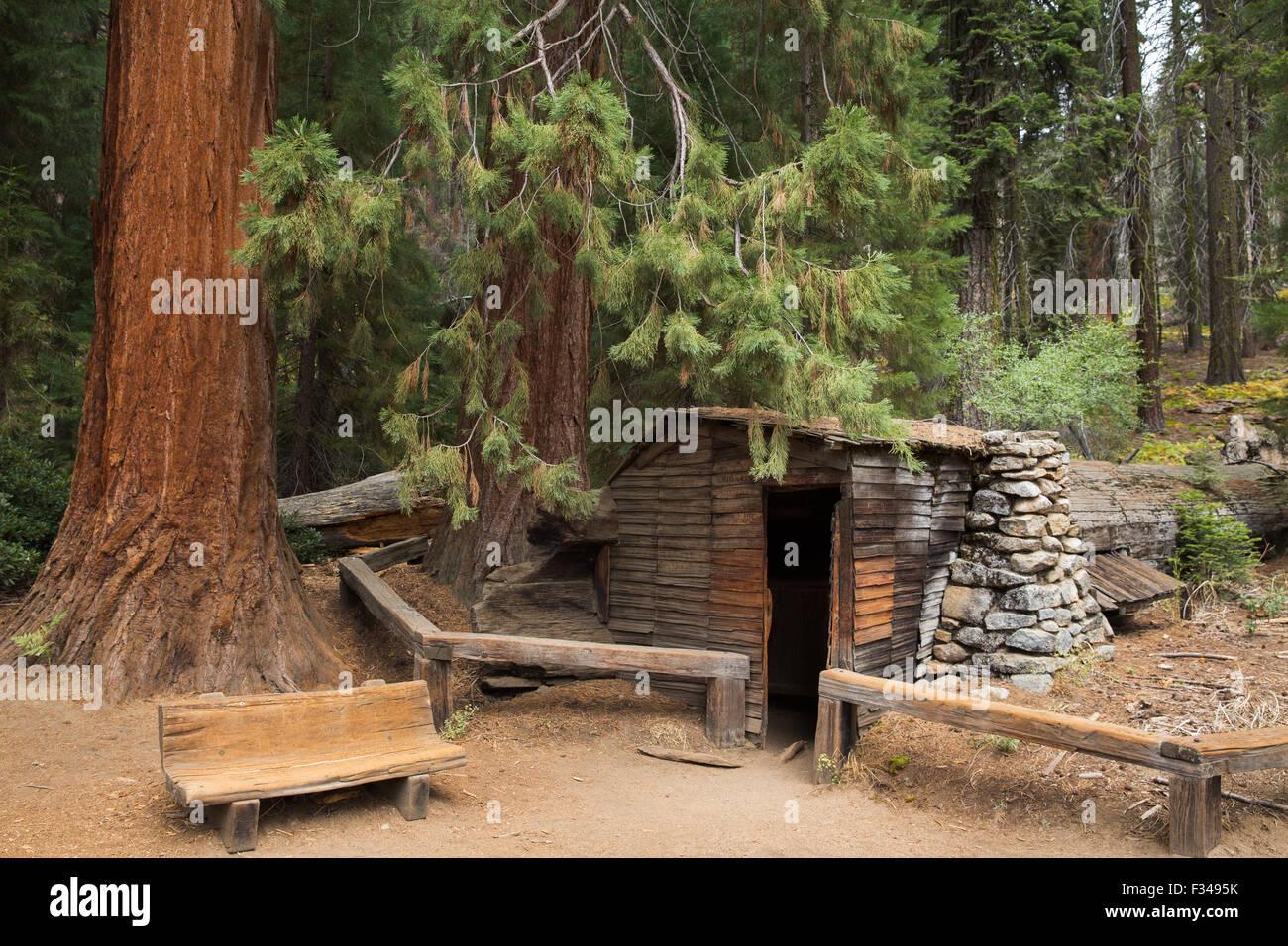 Tharp's Log, Log Meadow, Sequoia National Park, California, USA - Stock Image