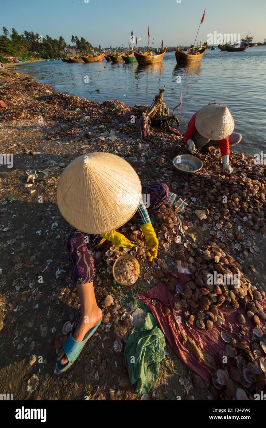 ladies de-shelling seafood, Mui Ne fishing village, Bình Thuận Province, Vietnam - Stock Image