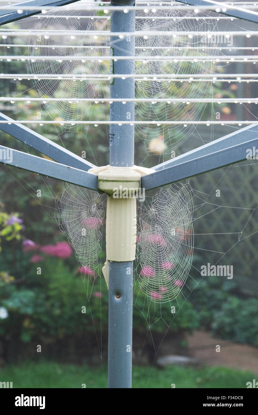 Mist covered Spiders webs on a washing line in an english garden in autumn - Stock Image