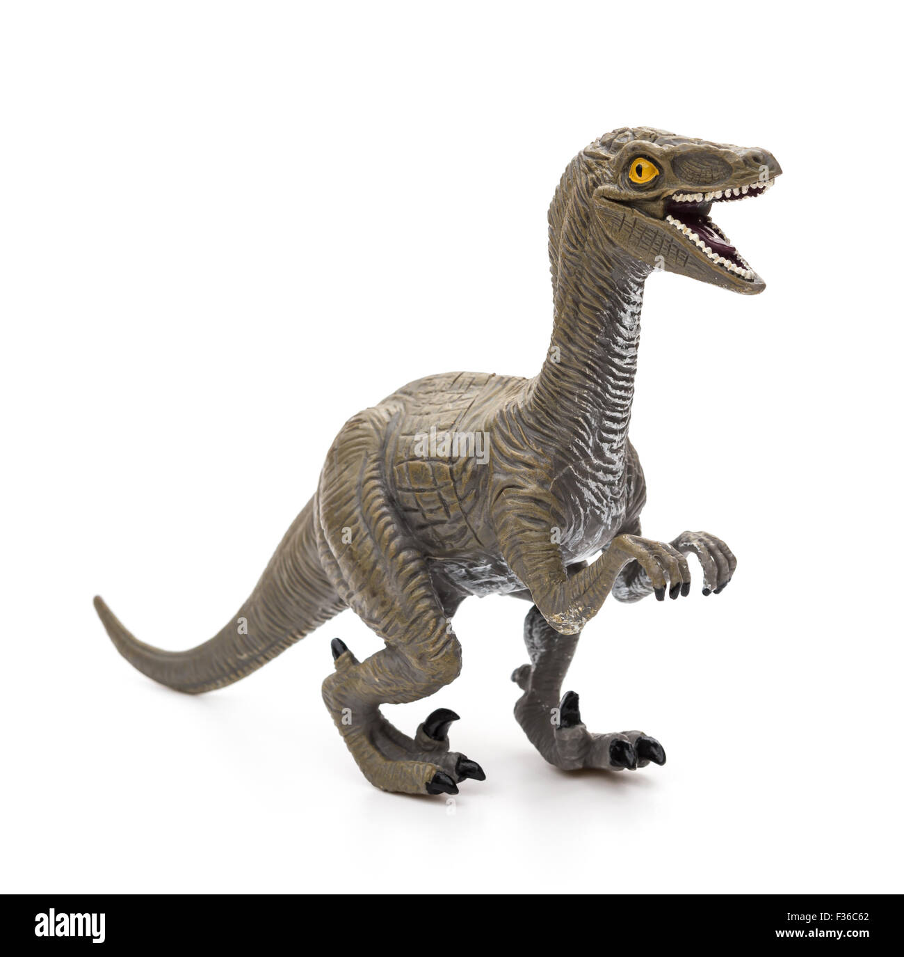 Deinonychus toy on a white background - Stock Image