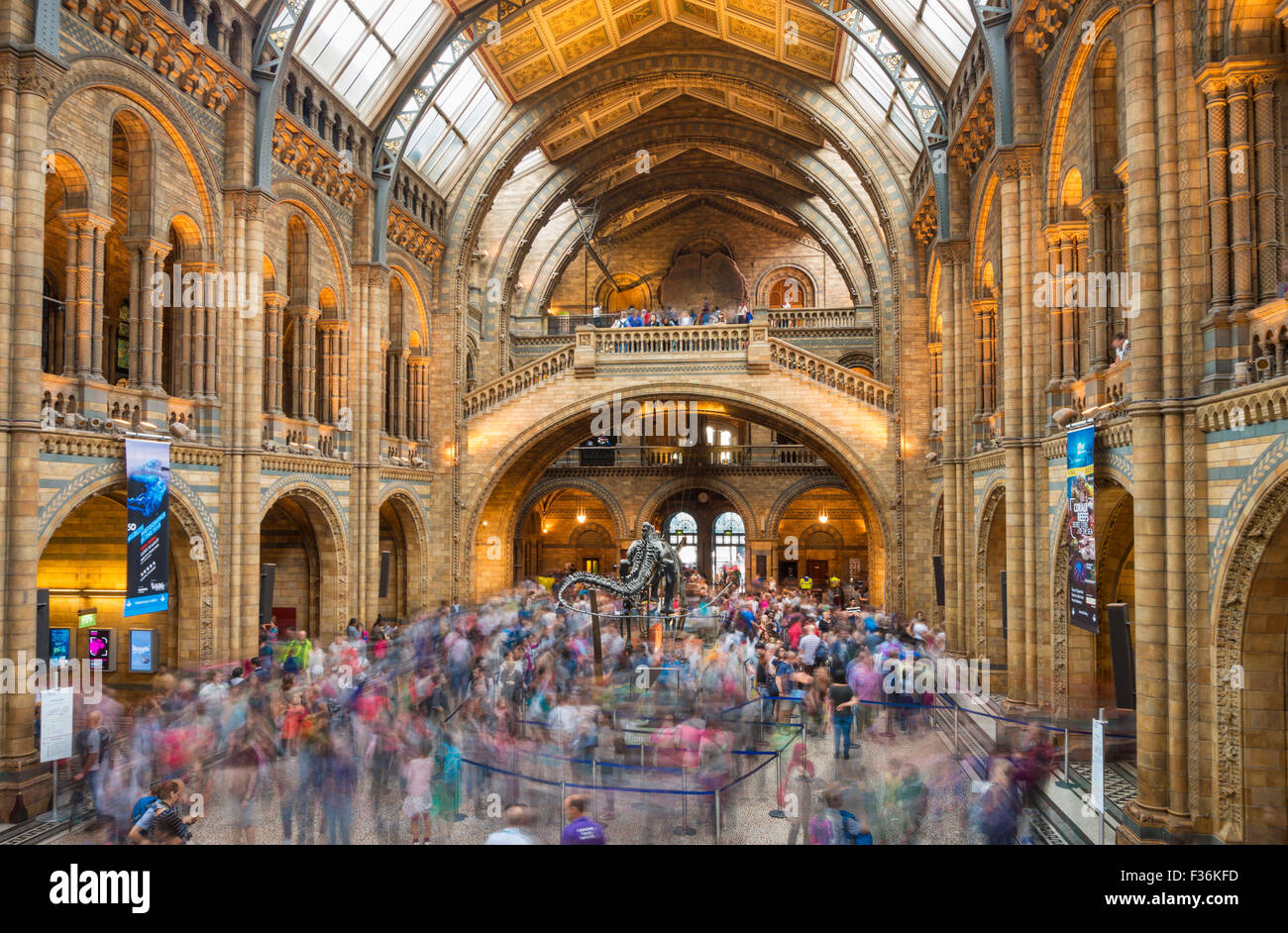 Visitors inside the Central hall of the Natural History Museum  Exhibition road South Kensington London England - Stock Image