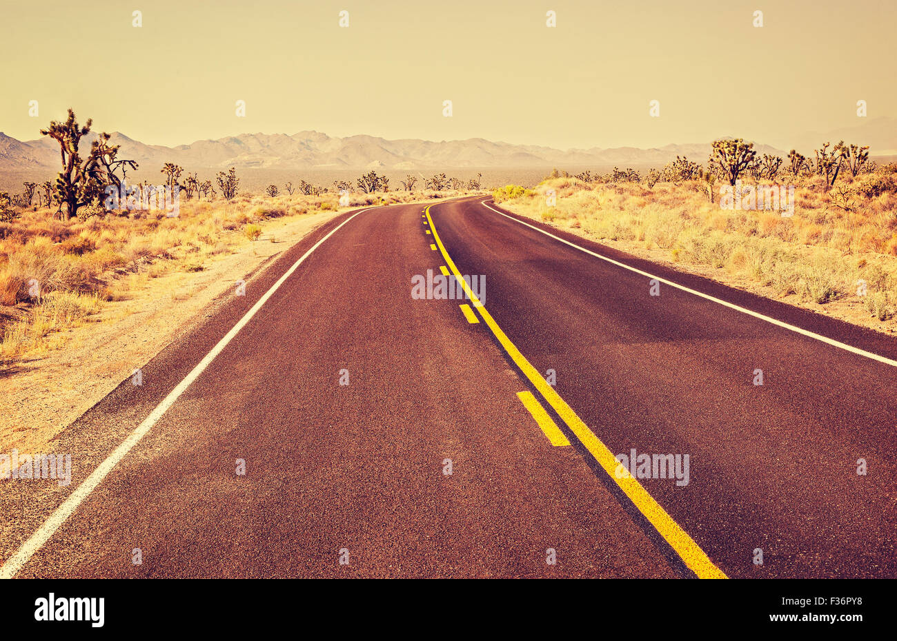 Retro old film style endless country highway, travel adventure concept, Joshua Tree National Park, USA. - Stock Image