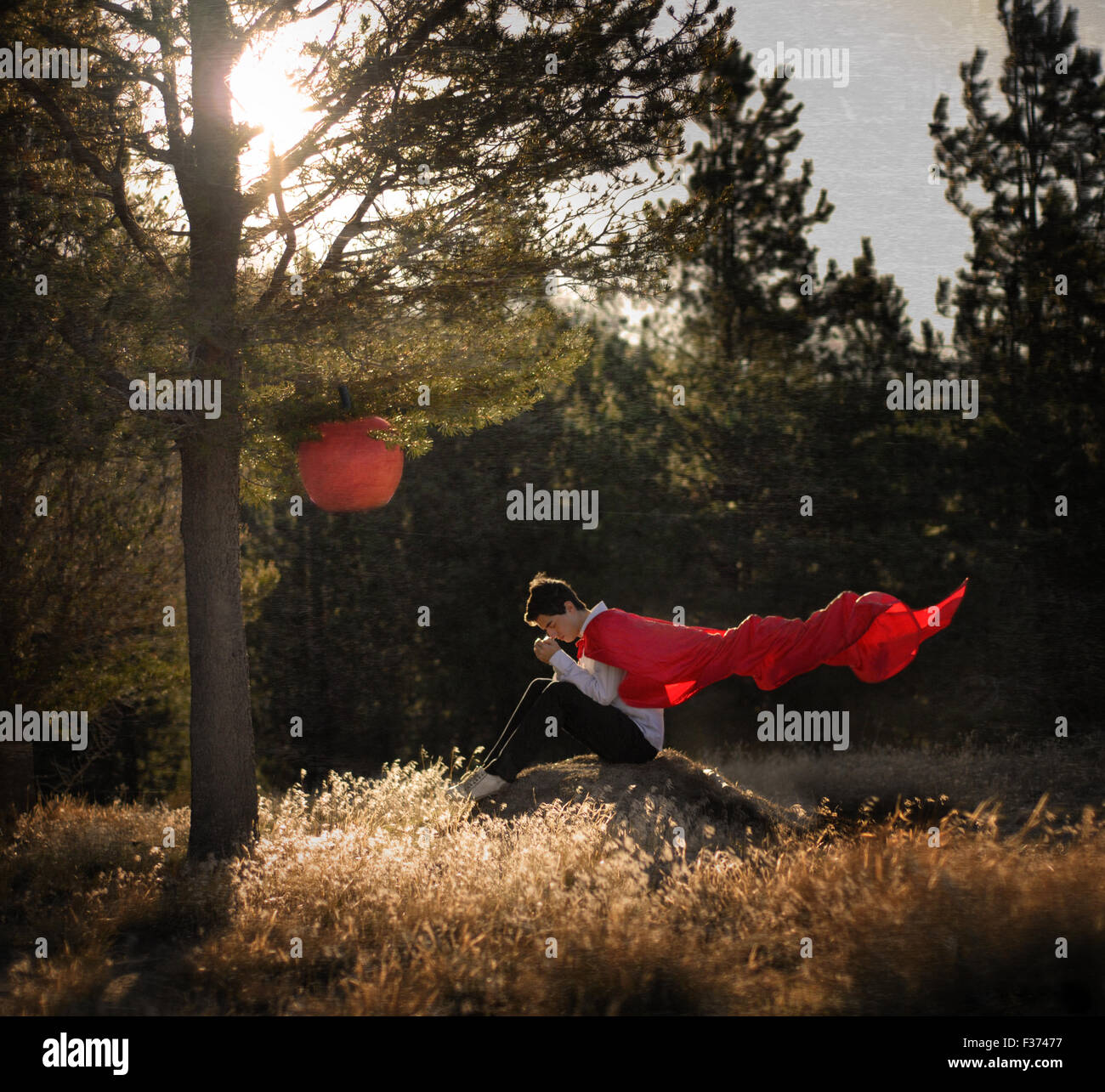 boy with a red cap siting in a hill in the forest - Stock Image