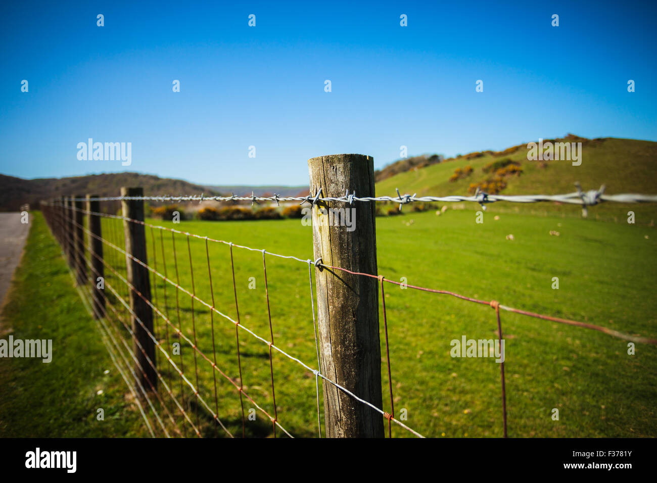 Barb wired fence in the countryside - Stock Image