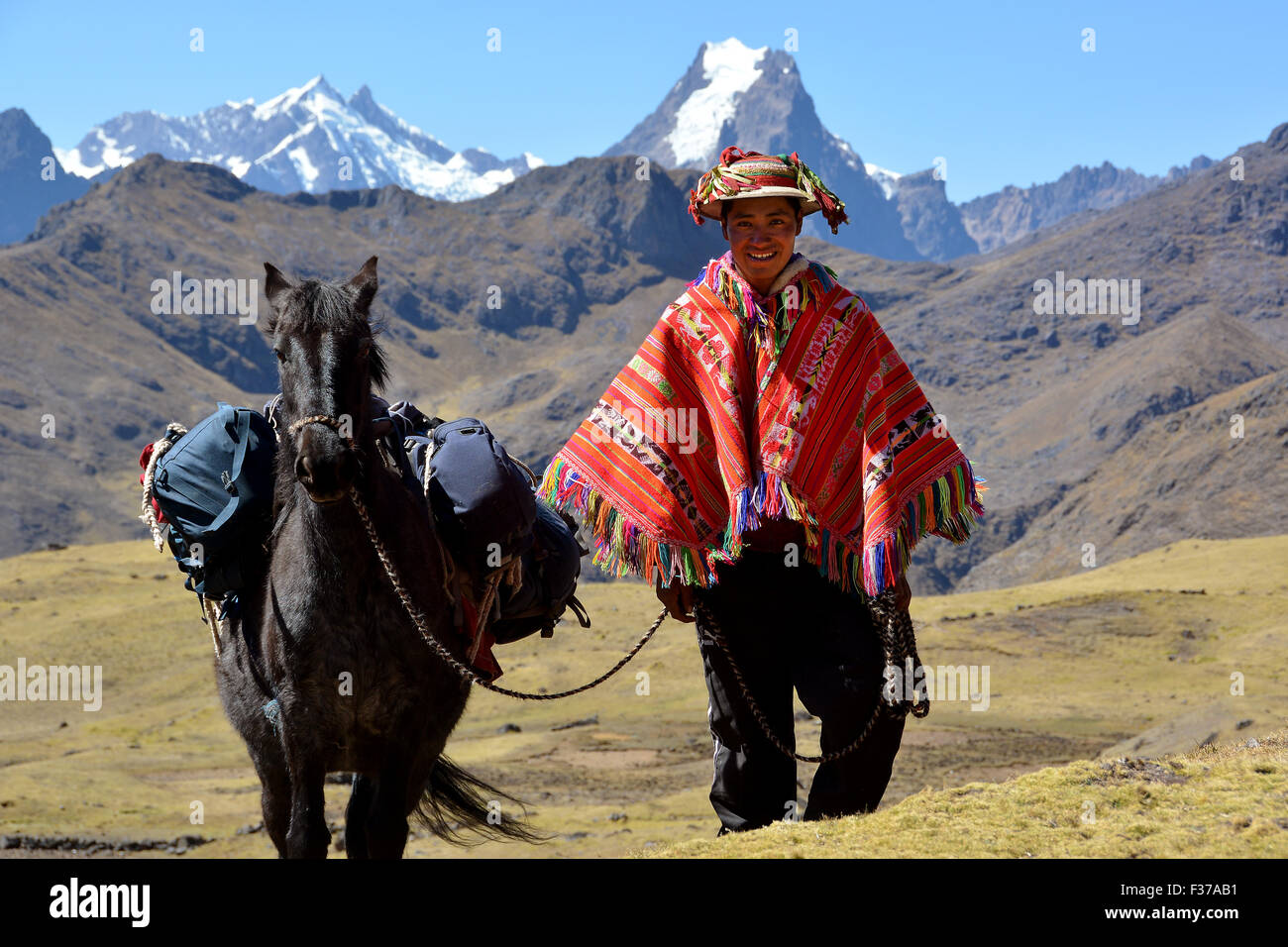 Indio mountain guide with colorful poncho and horse, in the mountains, Andes, Cusco Province, Peru - Stock Image