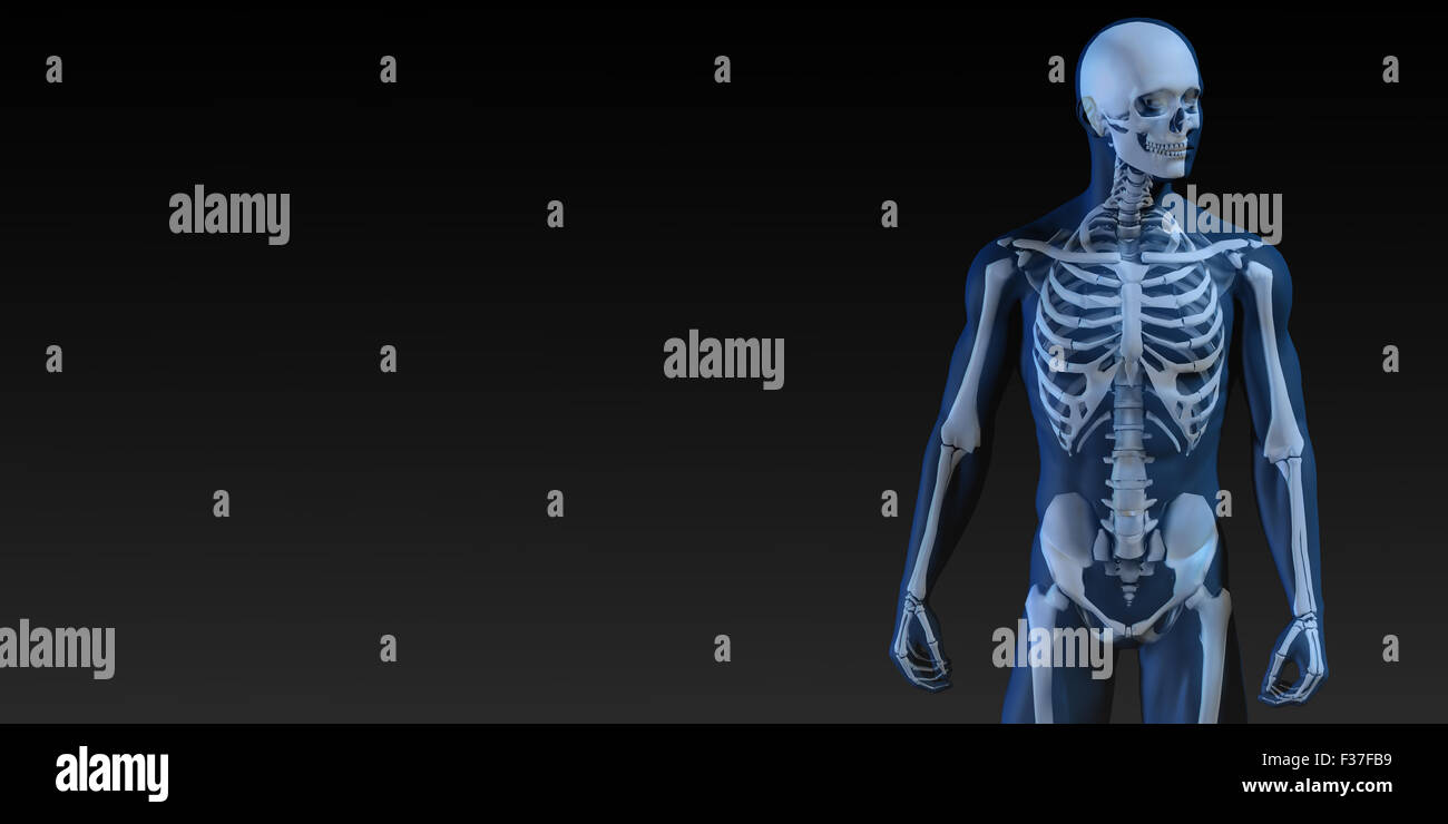 Human Bone Structure Diagram in Blue and Black - Stock Image