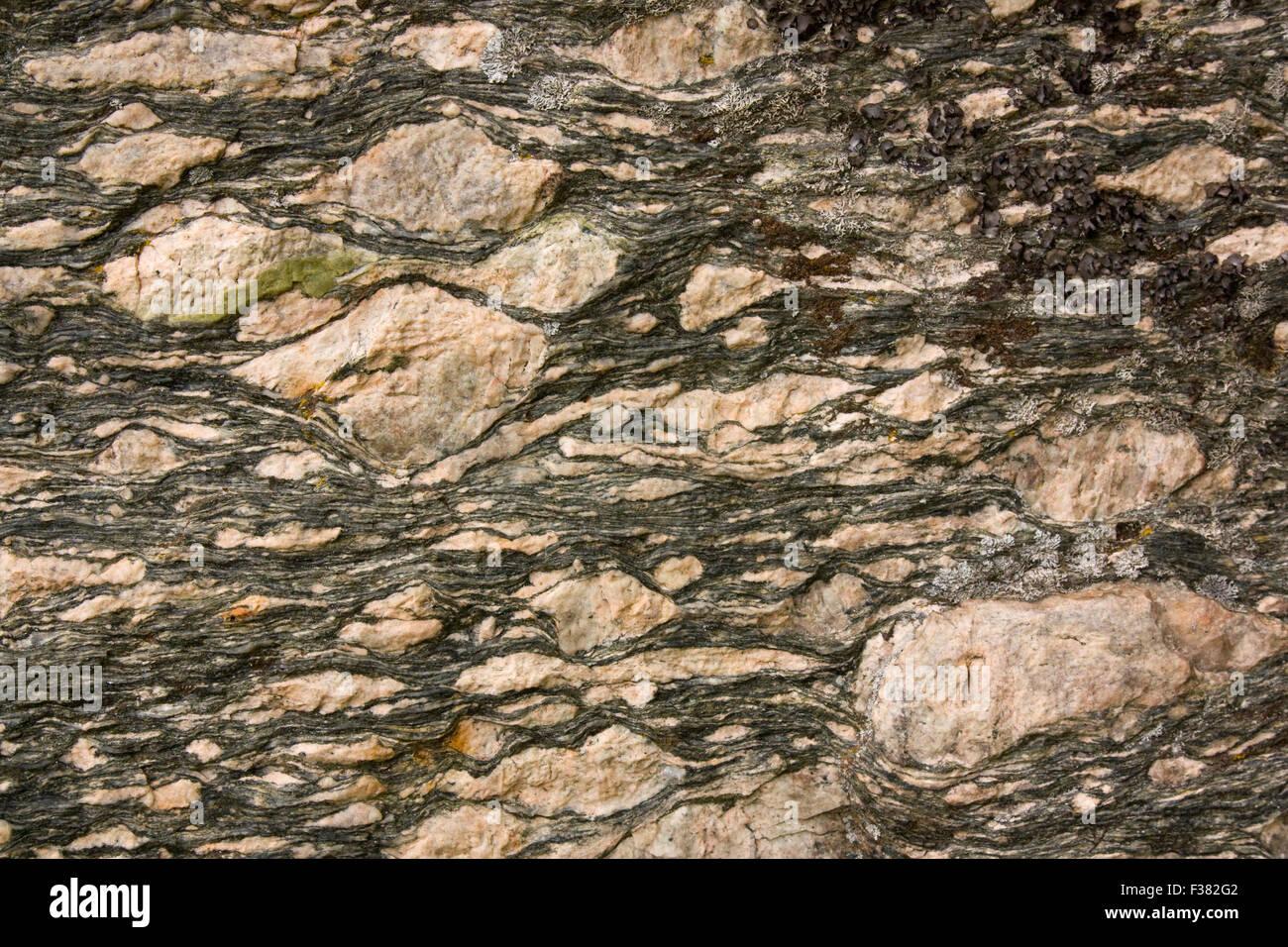 Mylonite with K-feldspar porphyroblasts - Stock Image