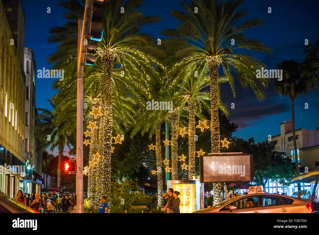 Florida Miami Beach Palm Christmas Trees In Lincoln Road
