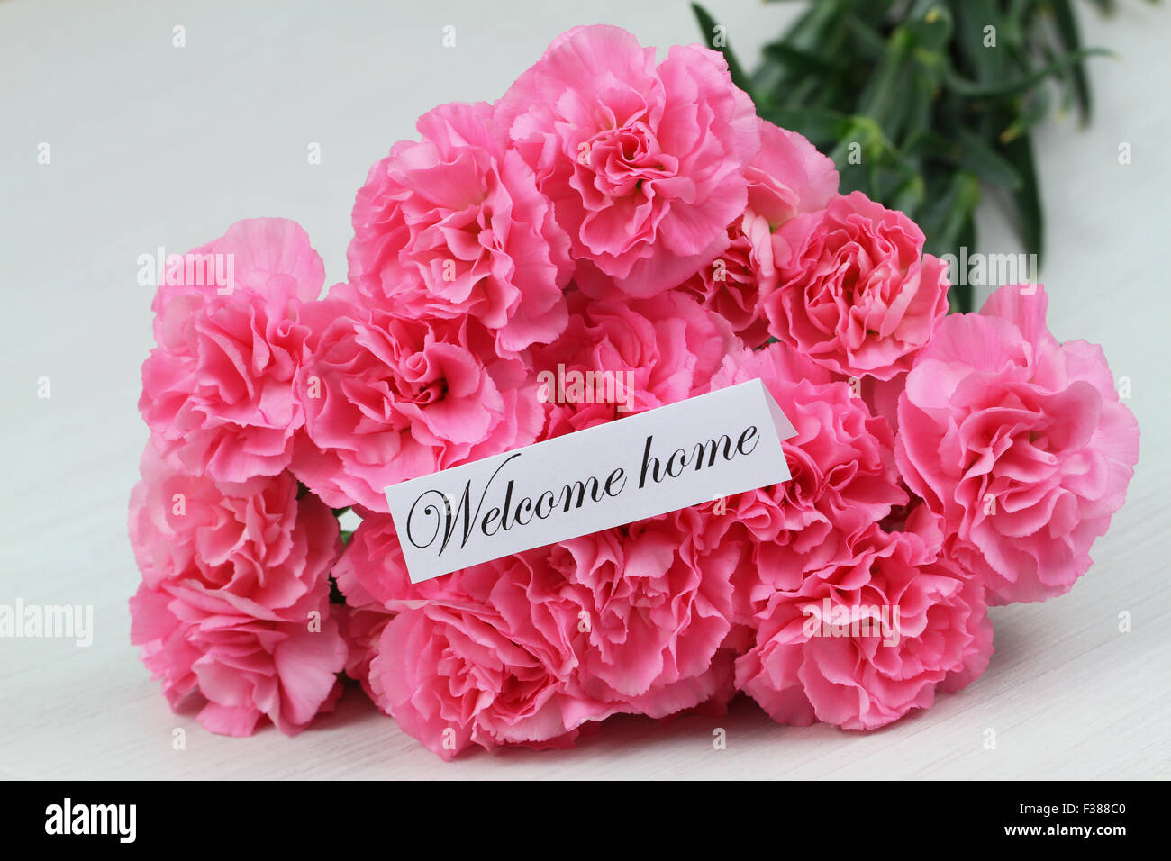 Welcome home card with pink carnation flower bouquet Stock Photo ...