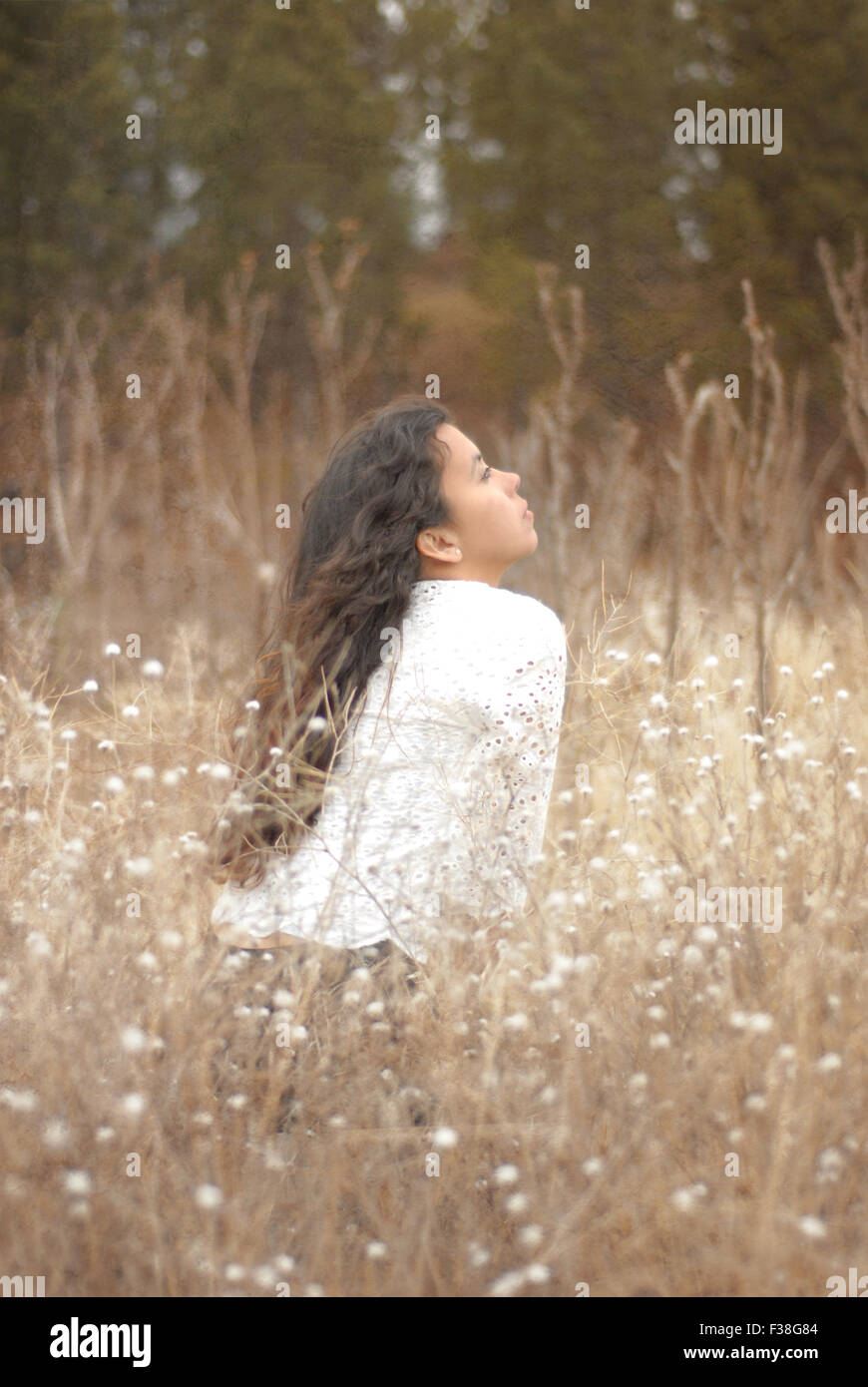 Girl with a delicate shirt sitting in the orange grass dreamy light - Stock Image