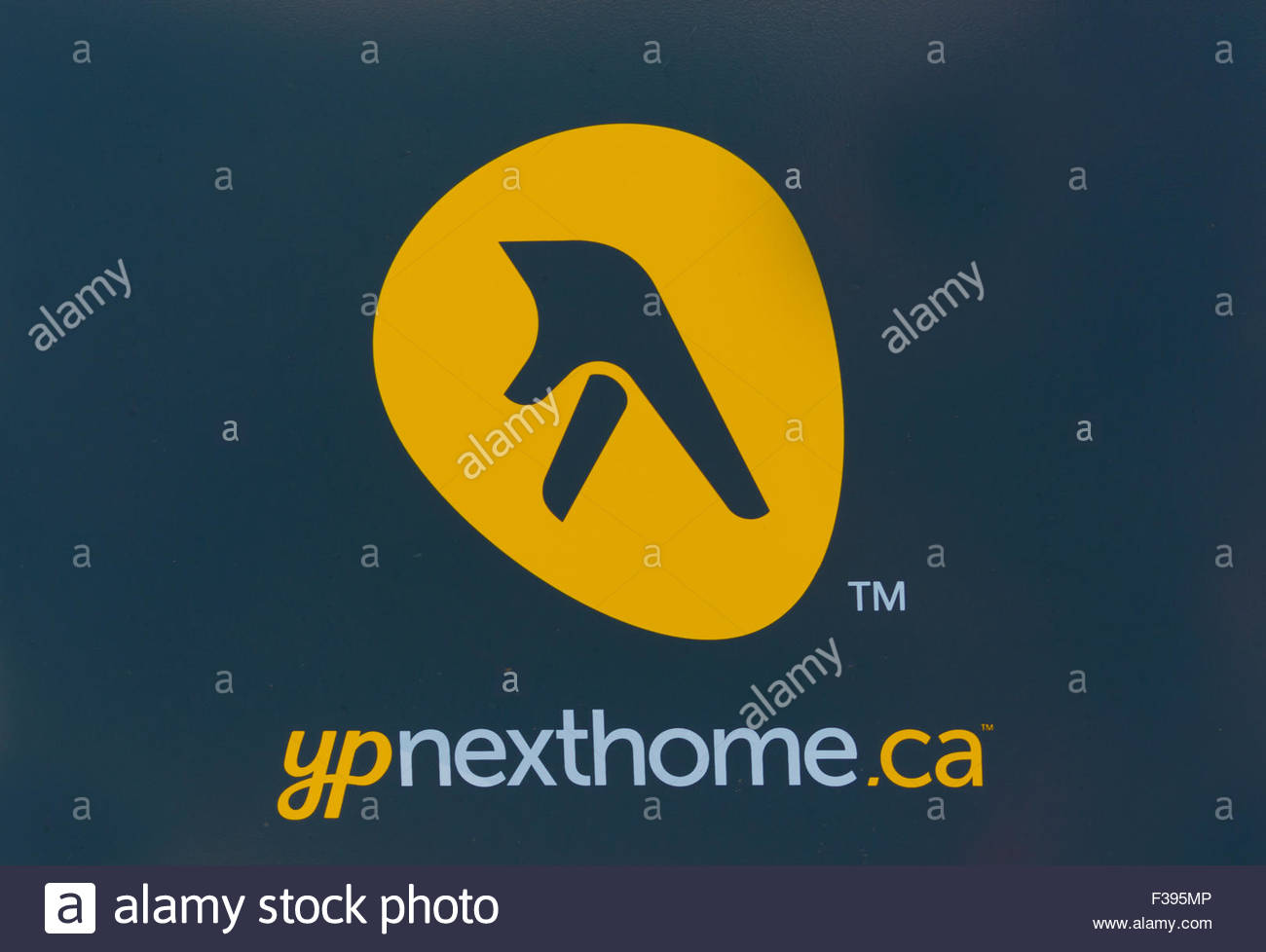 Yellow Pages Yellow Stock Photos Yellow Pages Yellow Stock Images