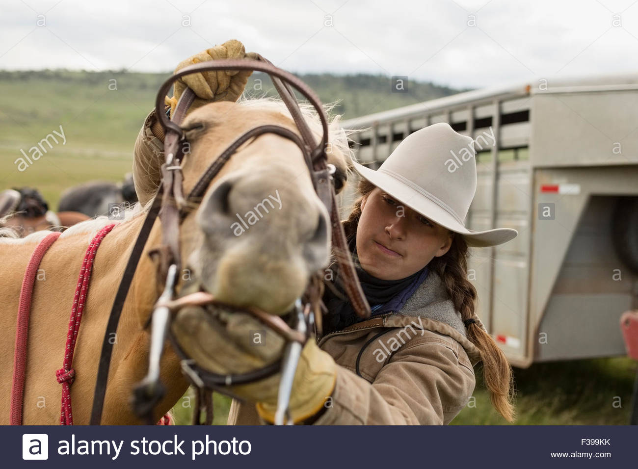 Female rancher placing bridle and bit on horse - Stock Image