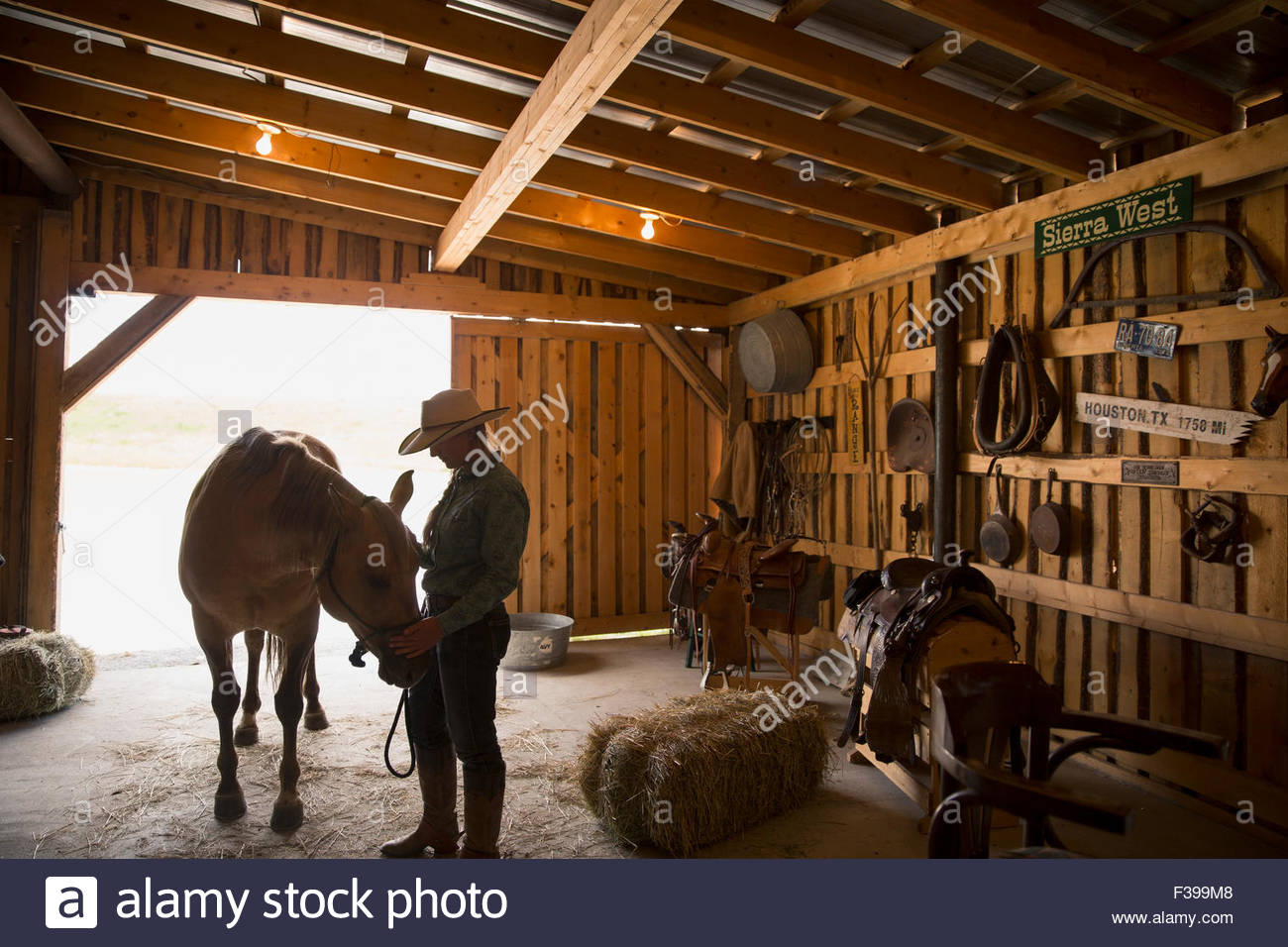 Female rancher with horse in stable - Stock Image
