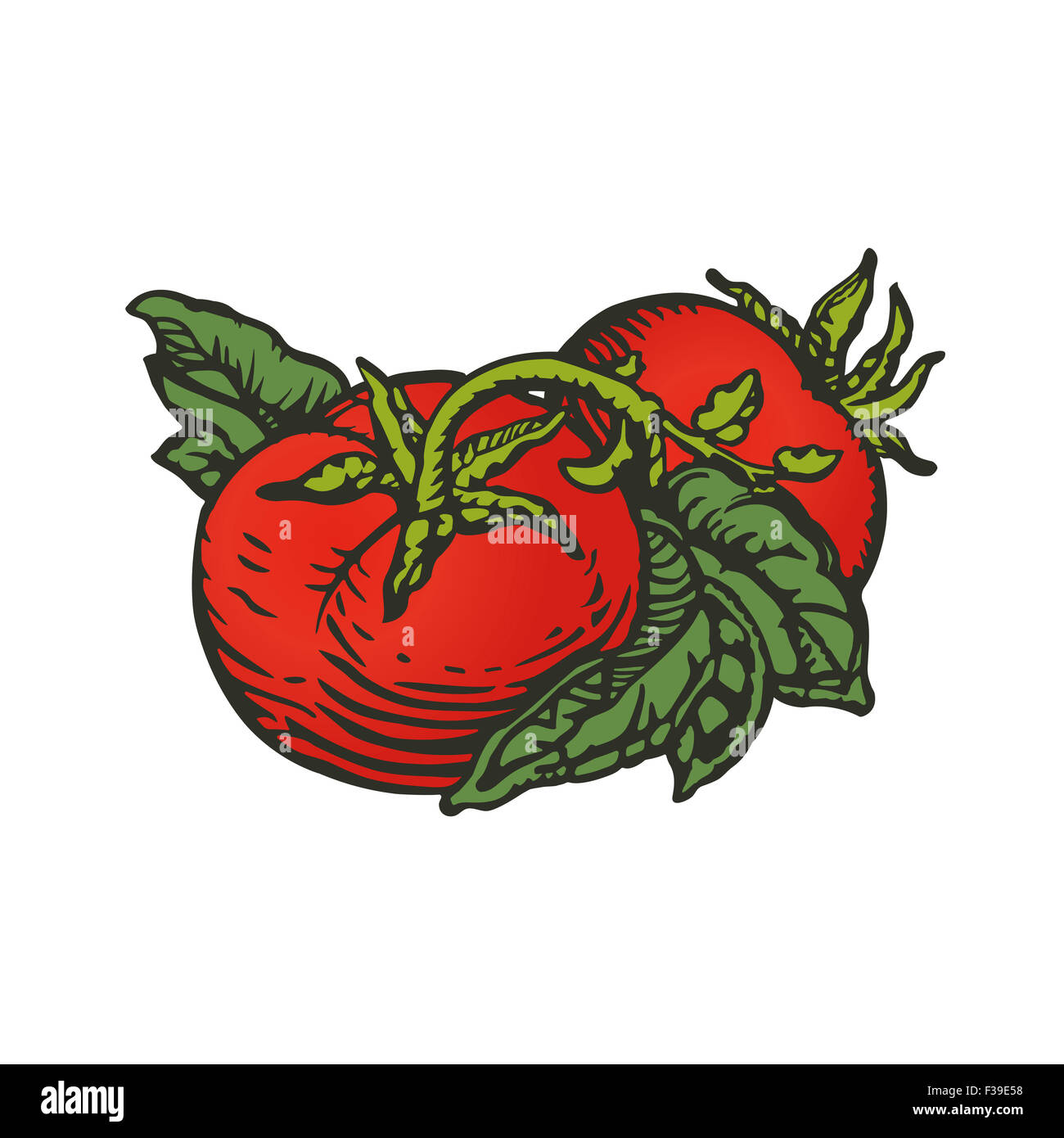 Couple of tomatoes in woodcut print style - Stock Image