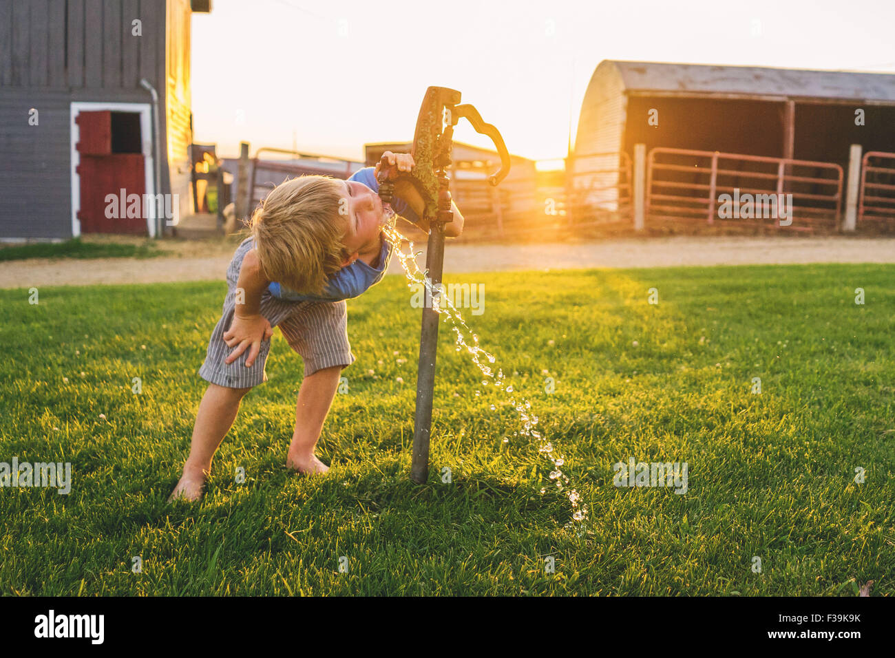 Boy drinking water from tap on a farm - Stock Image