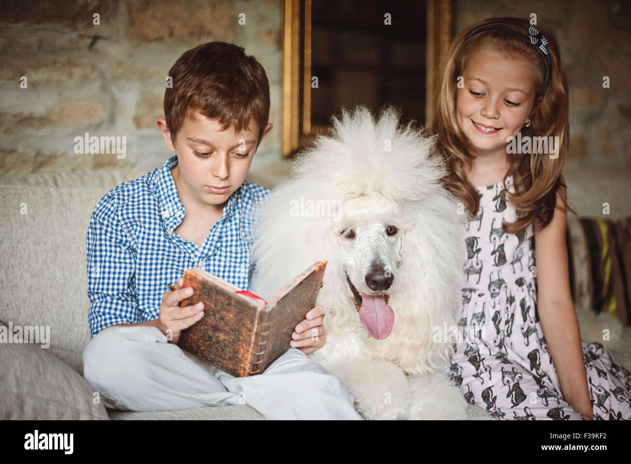 Boy and girl reading a book with their pet poodle dog - Stock Image