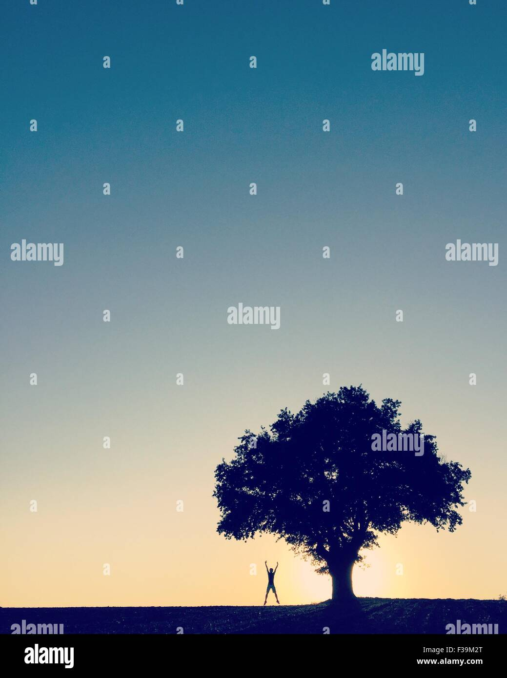 Unrecognizable person  standing under a tree doing a star jump, France - Stock Image