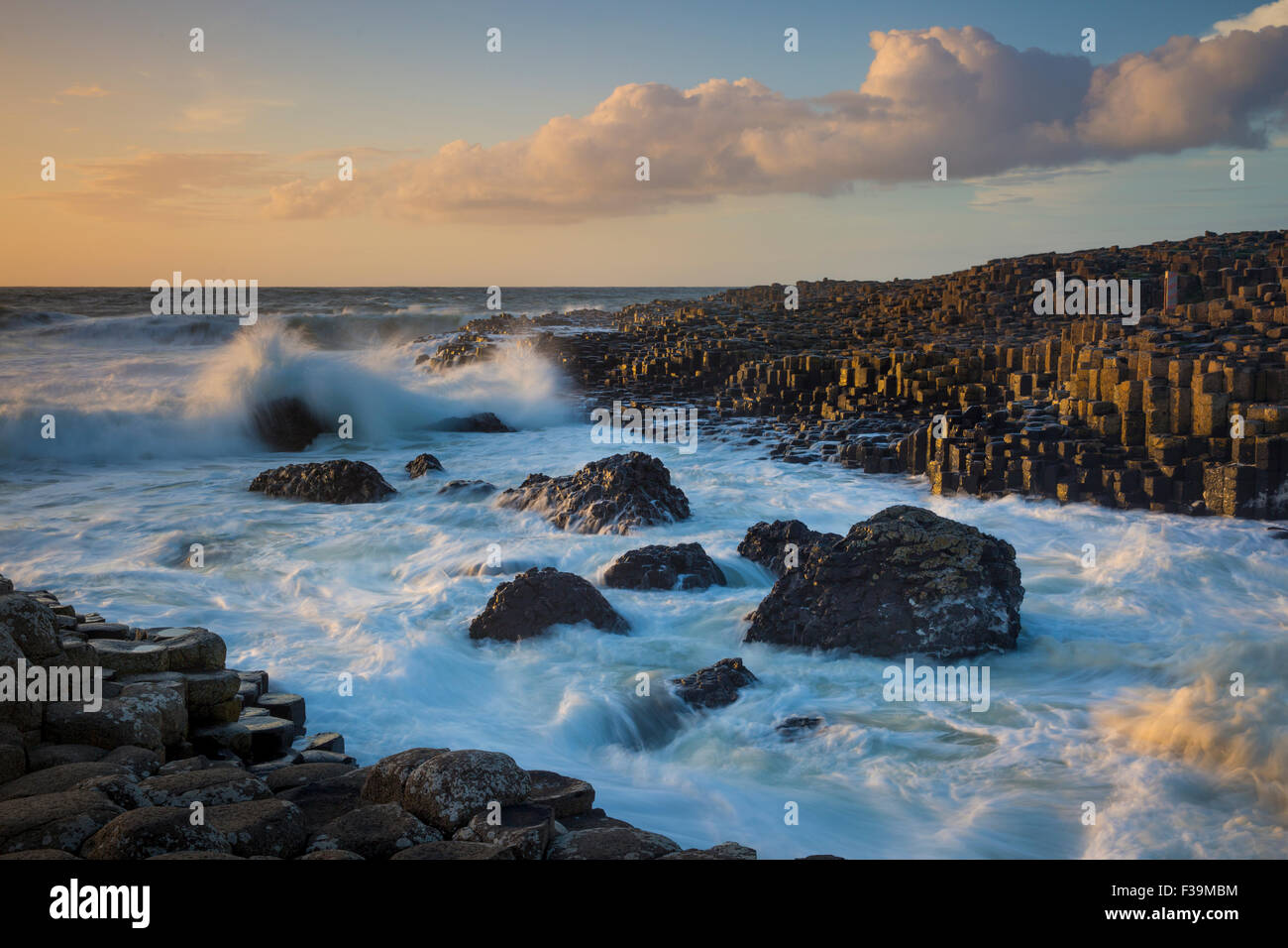 Evening sunlight on the Giant's Causeway, County Antrim, Northern Ireland - Stock Image