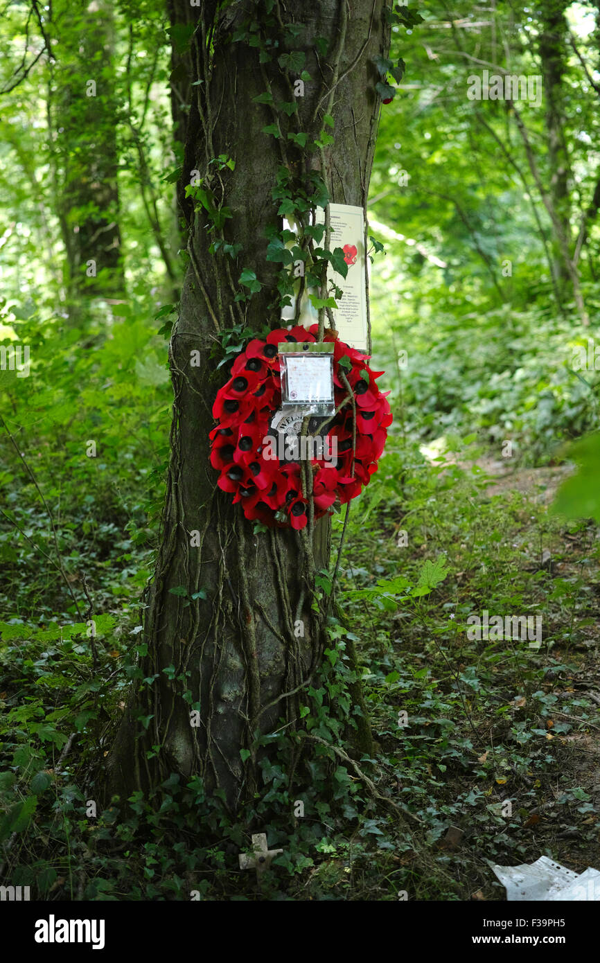 Memorial to a fallen soldier of the 36th Welsh Regiment in Mametz Wood who perished during the Bettle of the Somme Stock Photo