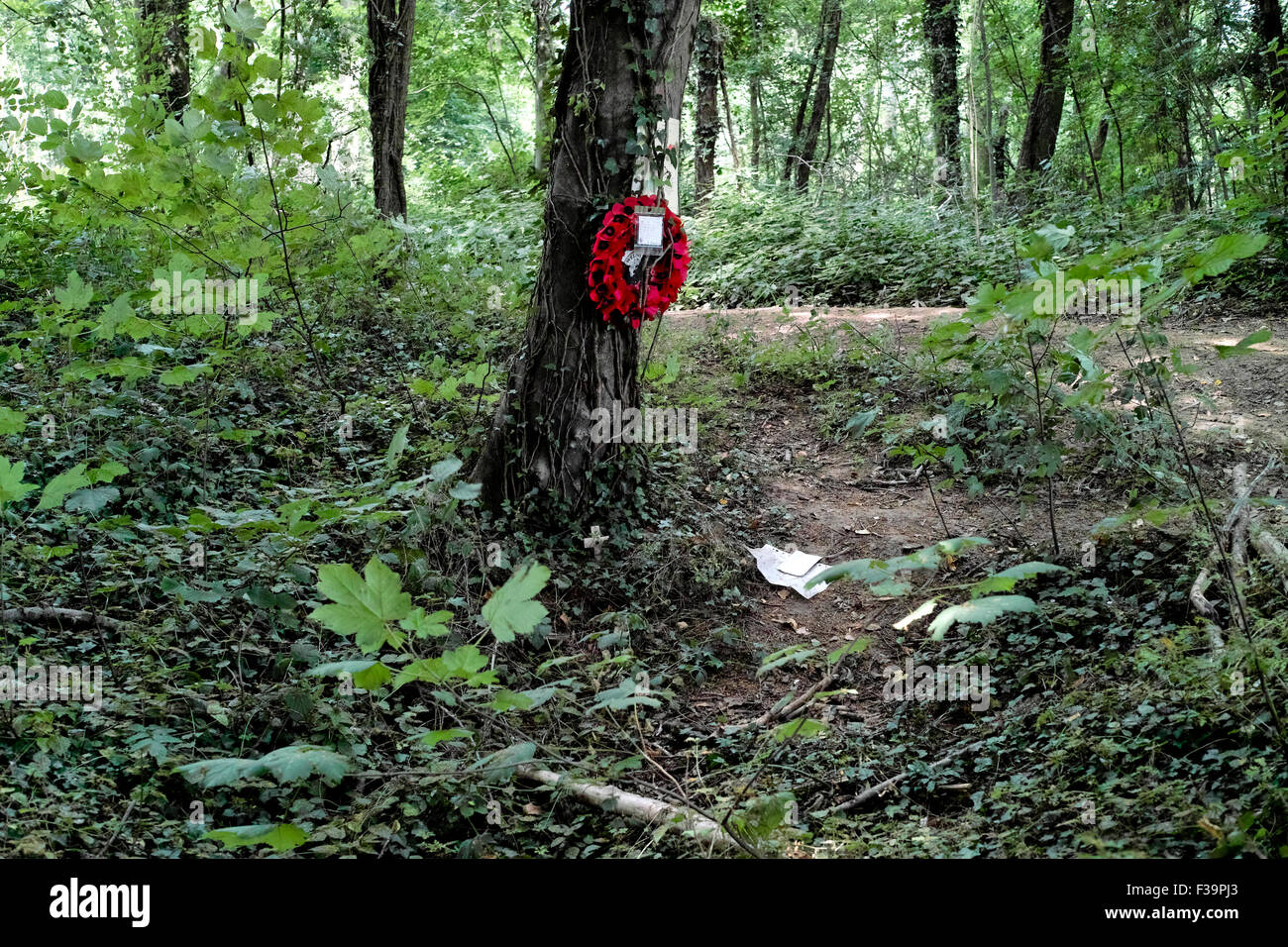 Memorial to a fallen soldier of the 36th Welsh Regiment in Mametz Wood who perished during the Battle of the Somme Stock Photo