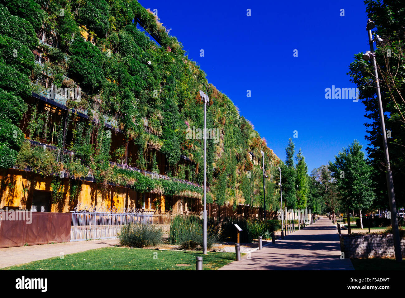 Sustainable building, with a green facade - Stock Image