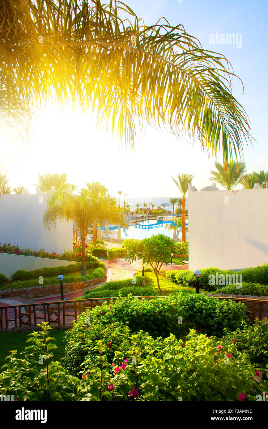 Beautiful landscape in the hotel of Egypt Stock Photo