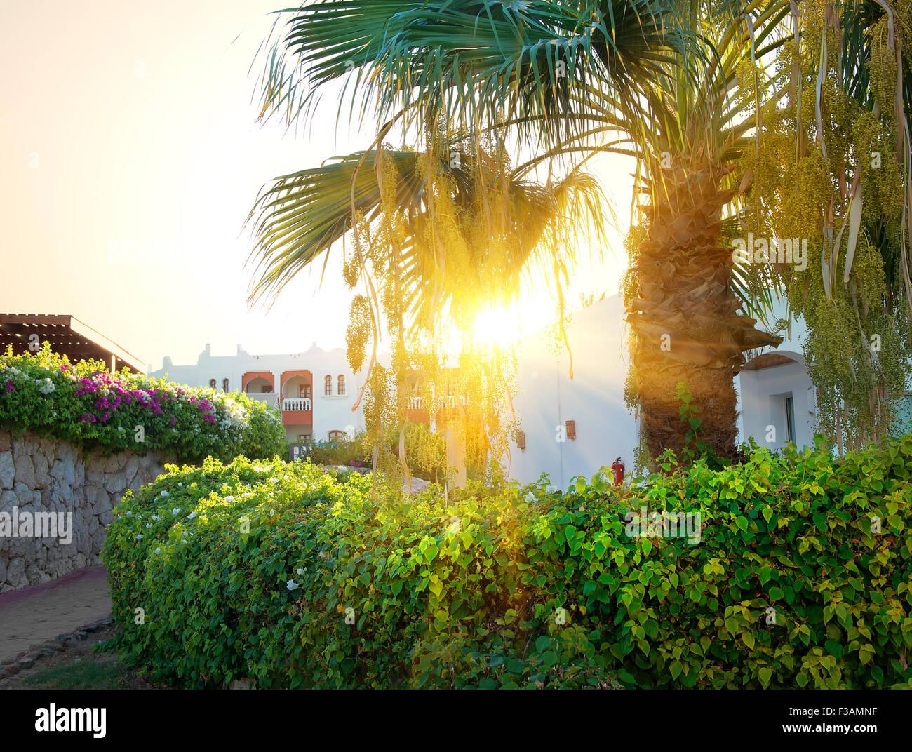 Bright sunrise over resort hotel in Egypt - Stock Image