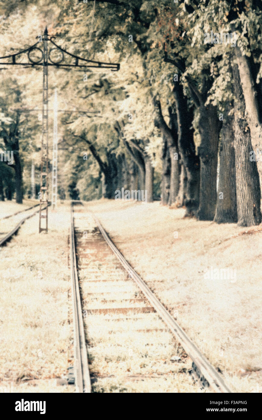 Old style photo of a straight railway surrounded by trees - Stock Image