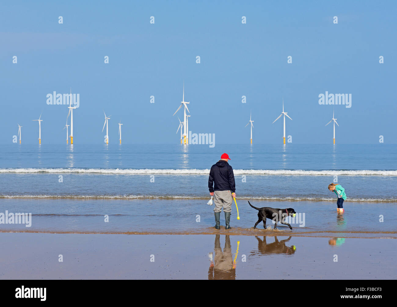 Man, girl and dog on the beach at Redcar, Cleveland, England UK - Stock Image